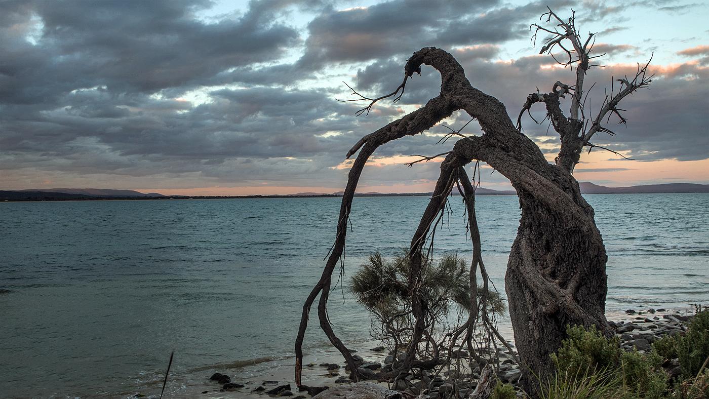 Swansea evening - Tasmania