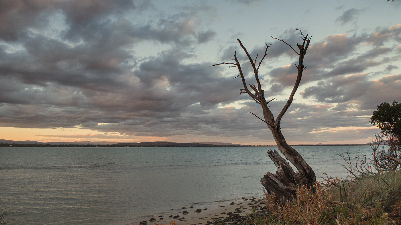 Evening at Swansea, Tasmania