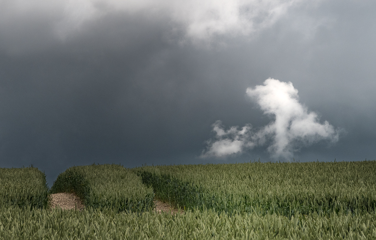 Stormy Wolds