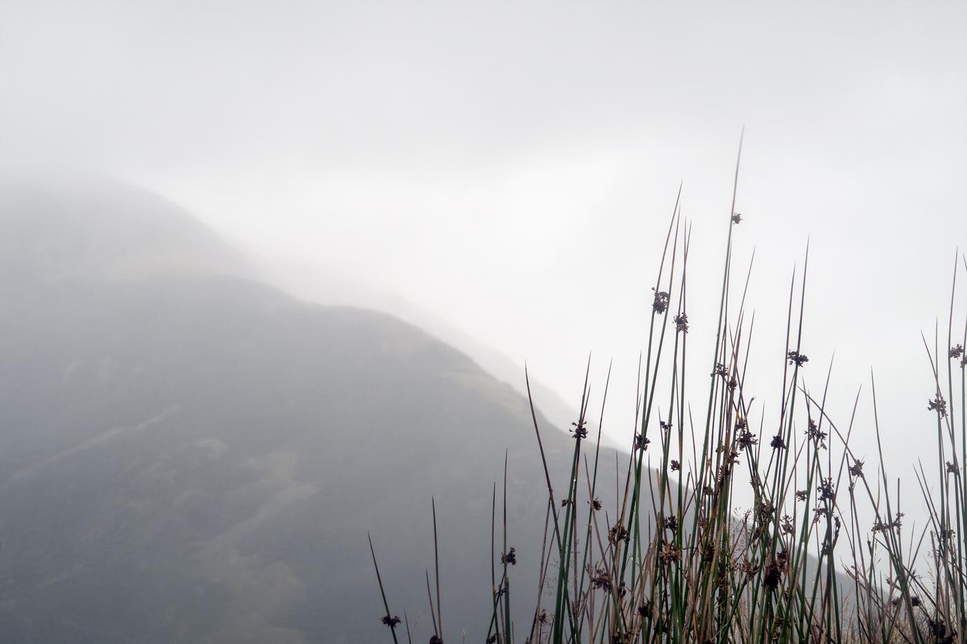 Rainy Helm Crag