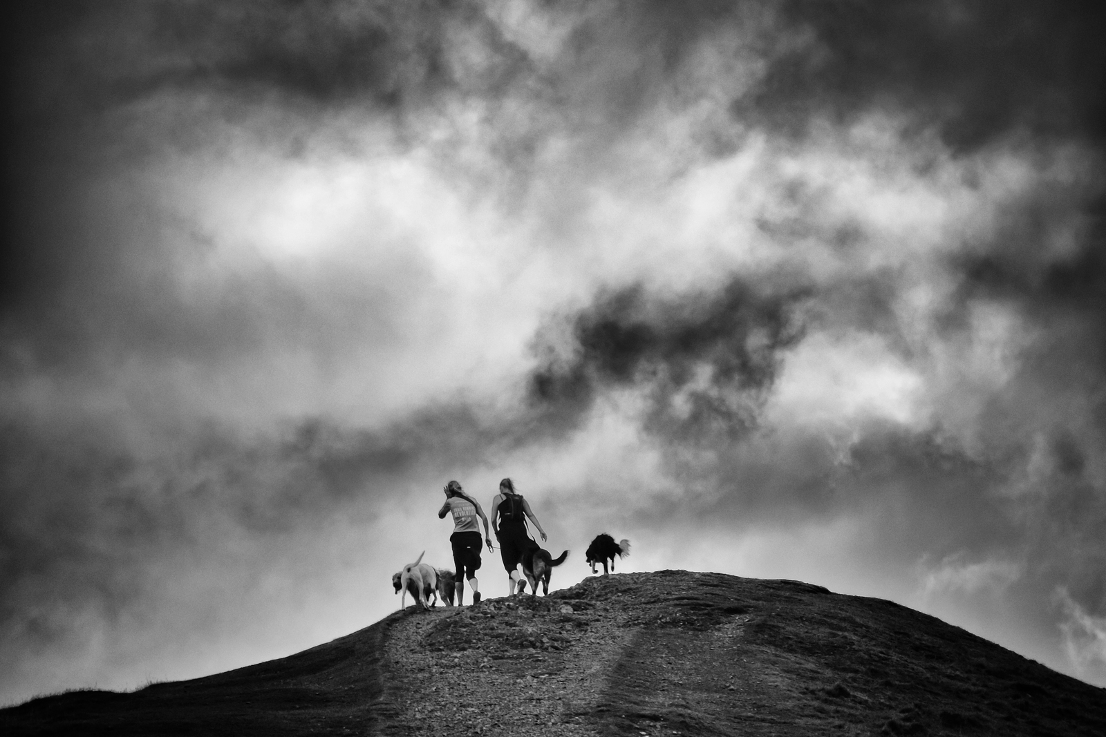 Dog Walkers, Latrigg