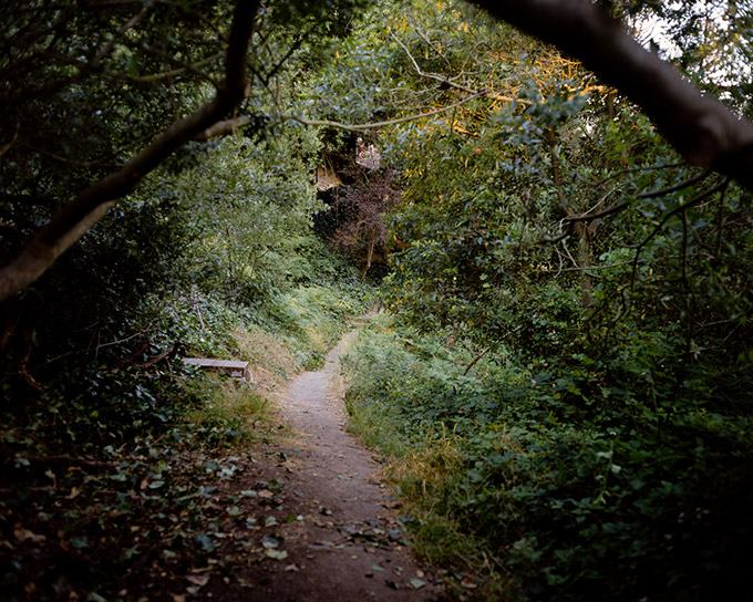 """Keeler Path,    24""""x36"""" pigment ink-print made from a scan of a 4x5 transparency."""