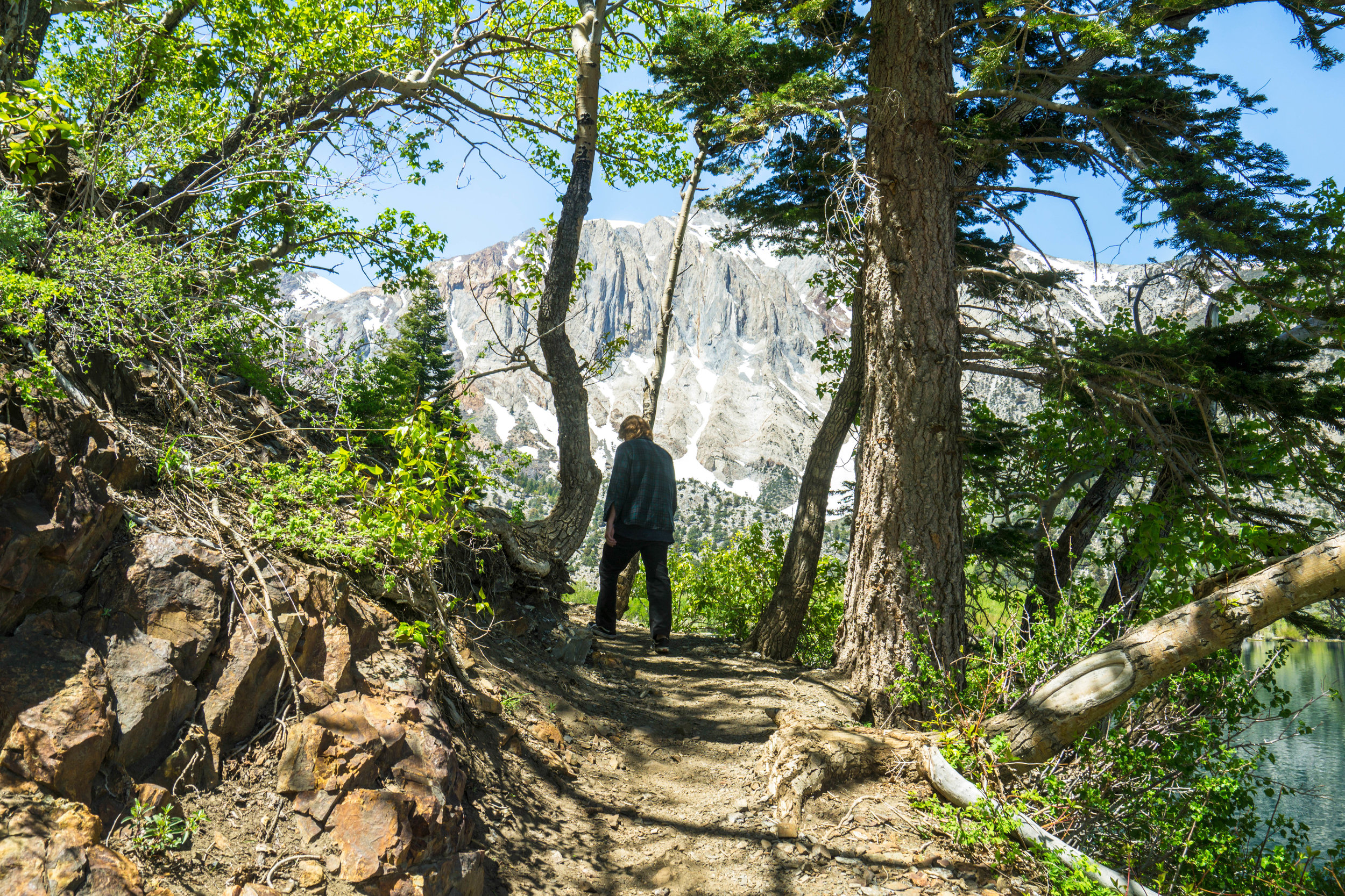 This hike is a geologist's paradise. The trail was littered with varying rock types & signs of the Sierra's seismic origins.