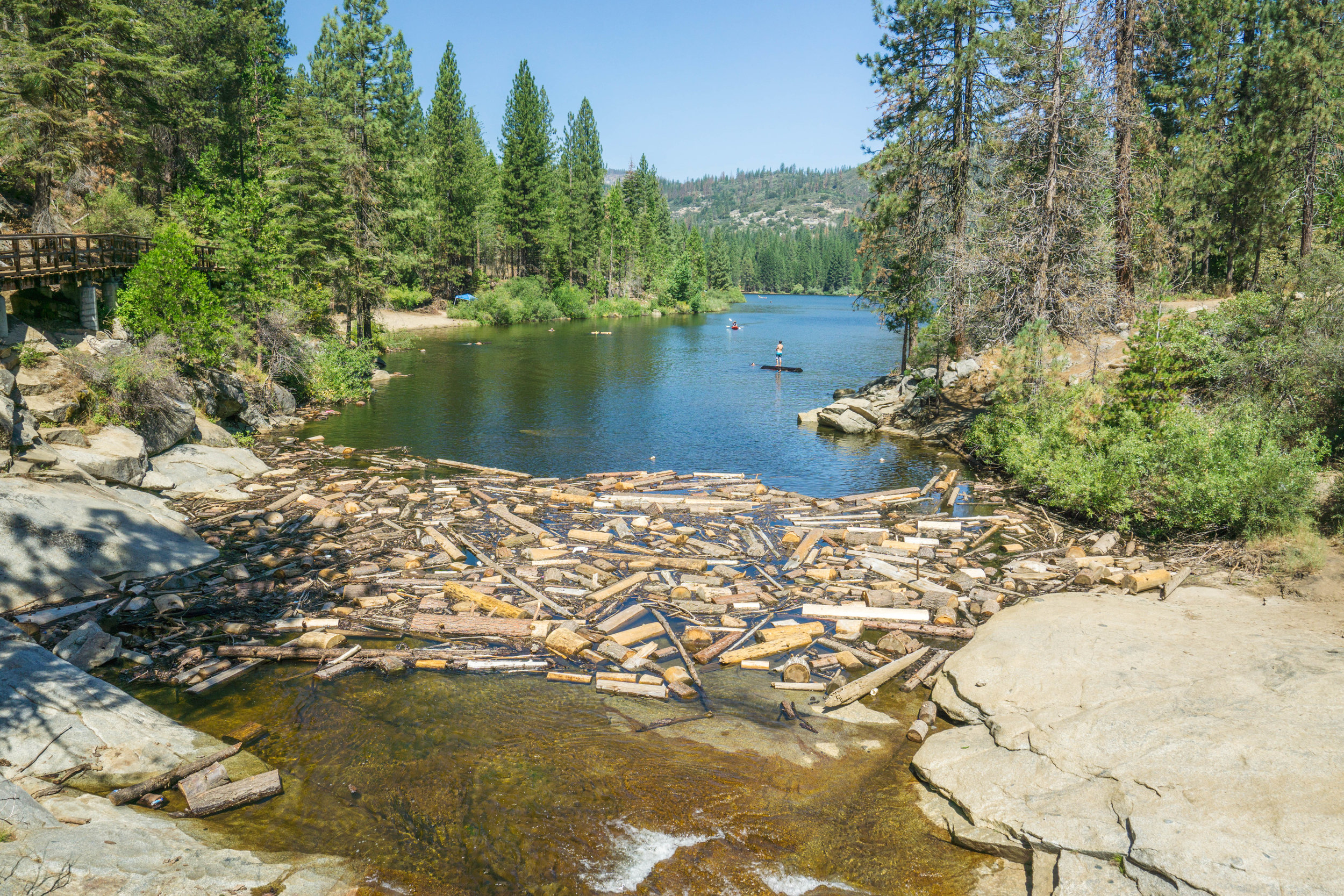 A mix of pine & Giant Sequoia logs create the perfect floatation devices. We'll revisit this in a bit!