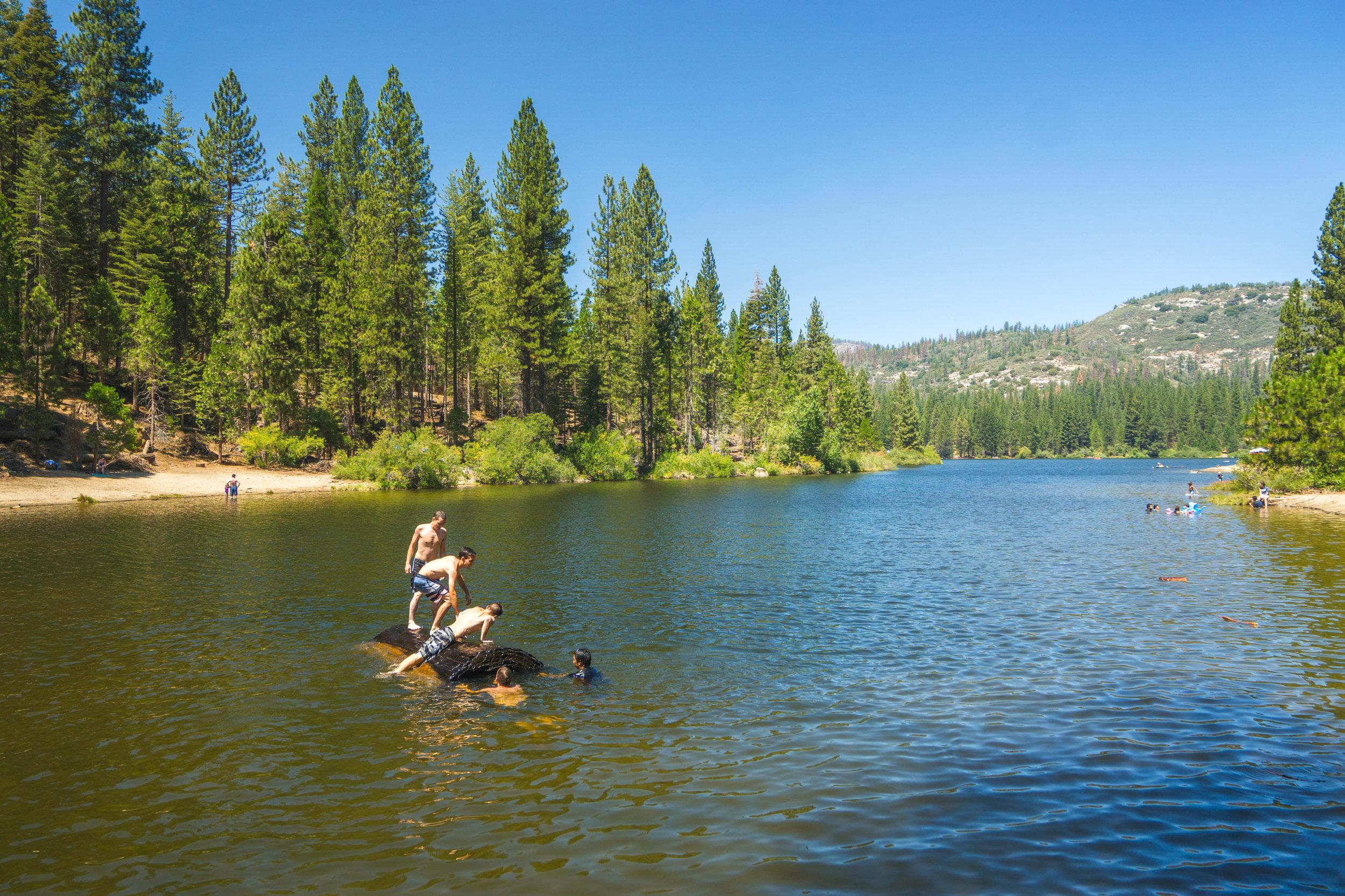 Downstream we venture to the lake & clamor onto a massive Giant Sequoia log!