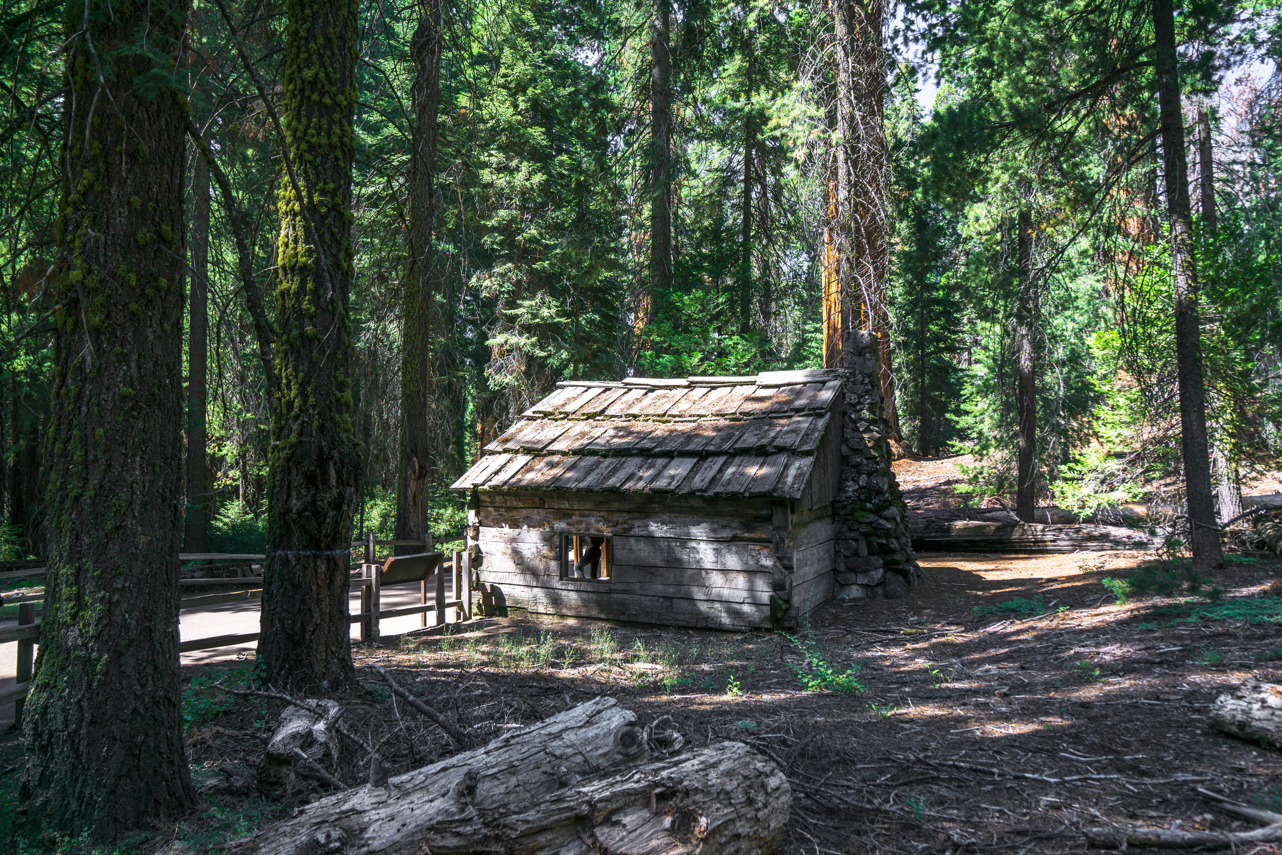 An old cabin from an 1800's rancher remains as a reminder that these mountains weren't always a National Park.