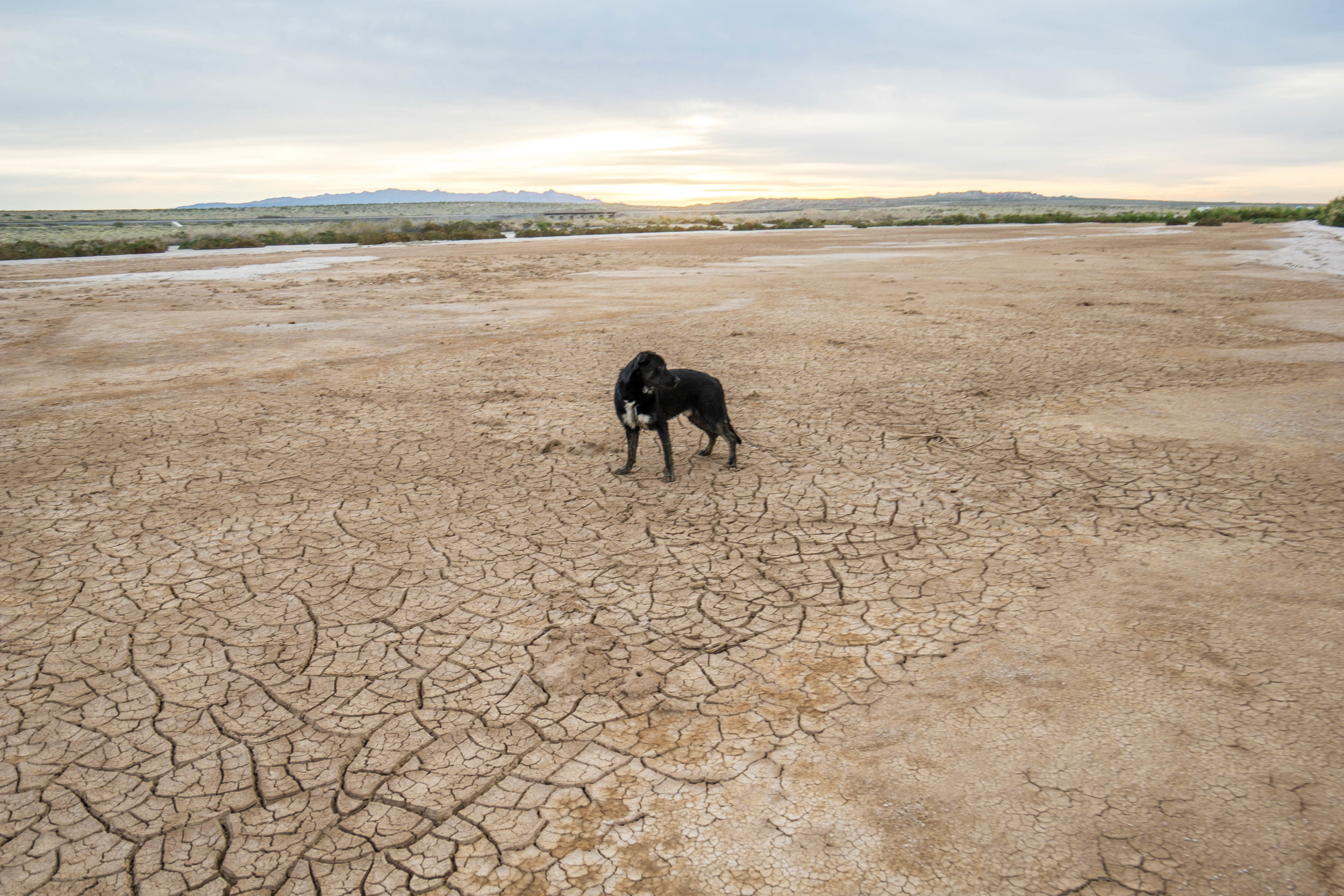 The desert's aridity is evident even next to California's largest lake. In fact, without a spill from a Colorado River water pipe & agricultural run-off, there wouldn't even be a lake here.
