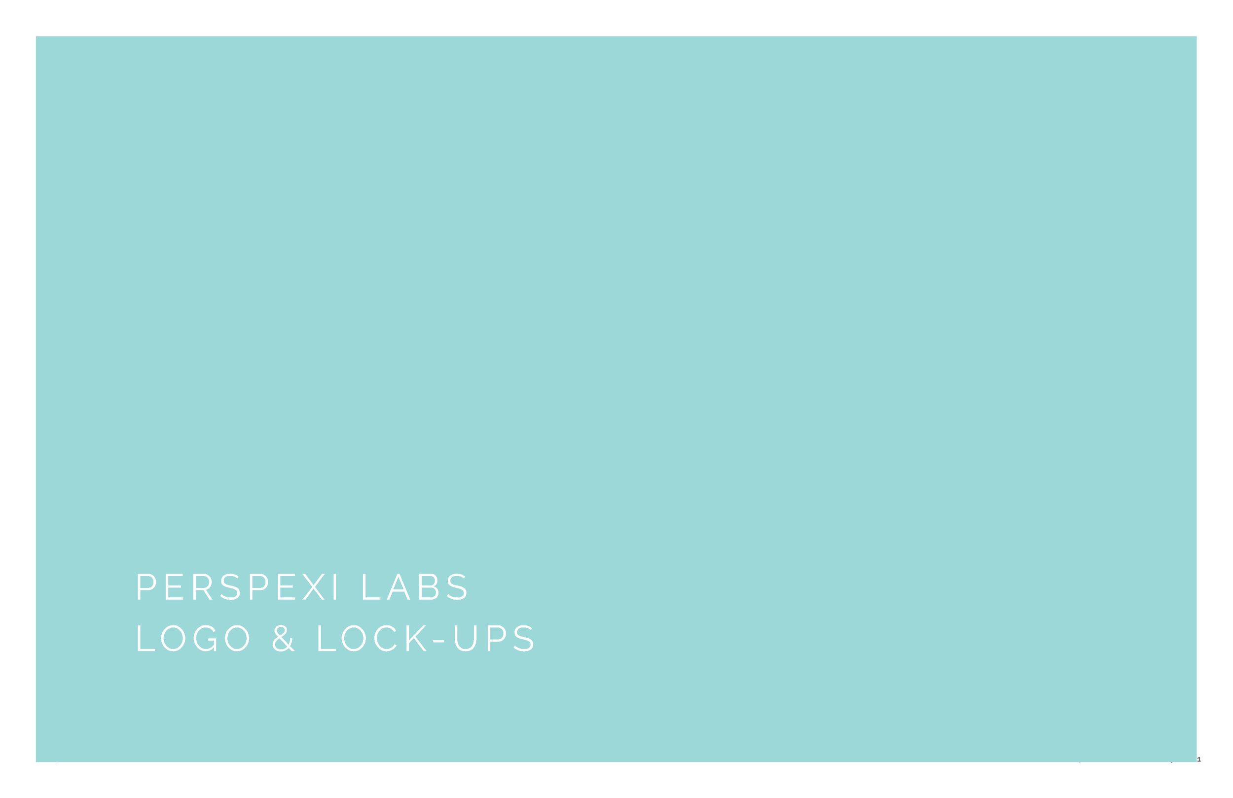0412_StyleGuide_PerspexiLabs_Page_02.png