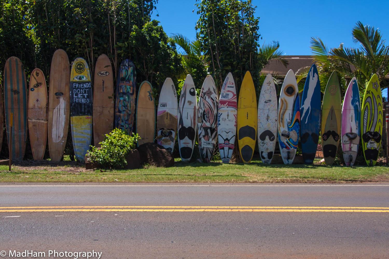 Friends Don't Let Friends Surf