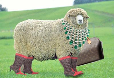 fashion sheep