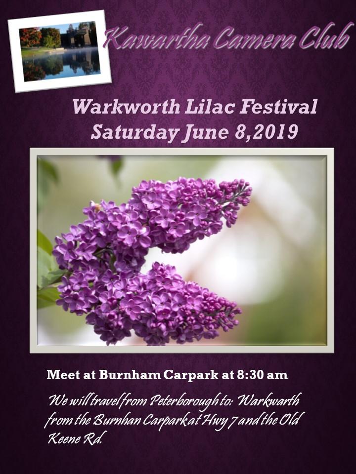 Warkworth Lilac.jpg