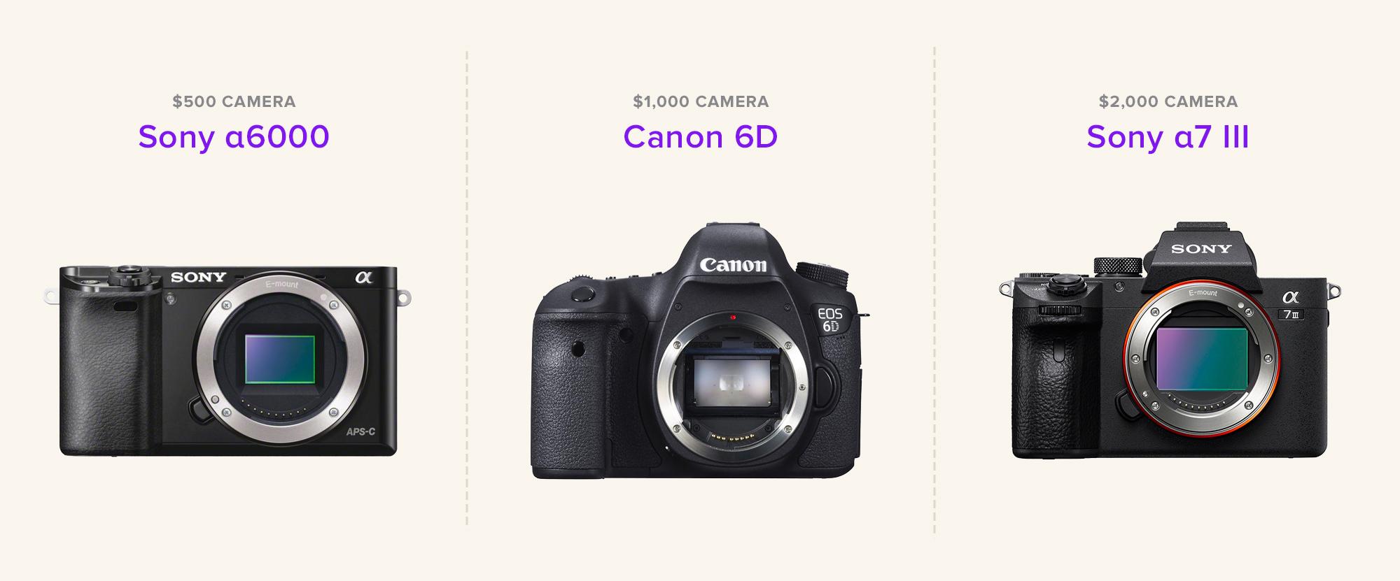 Best Concert Photography Cameras 2018