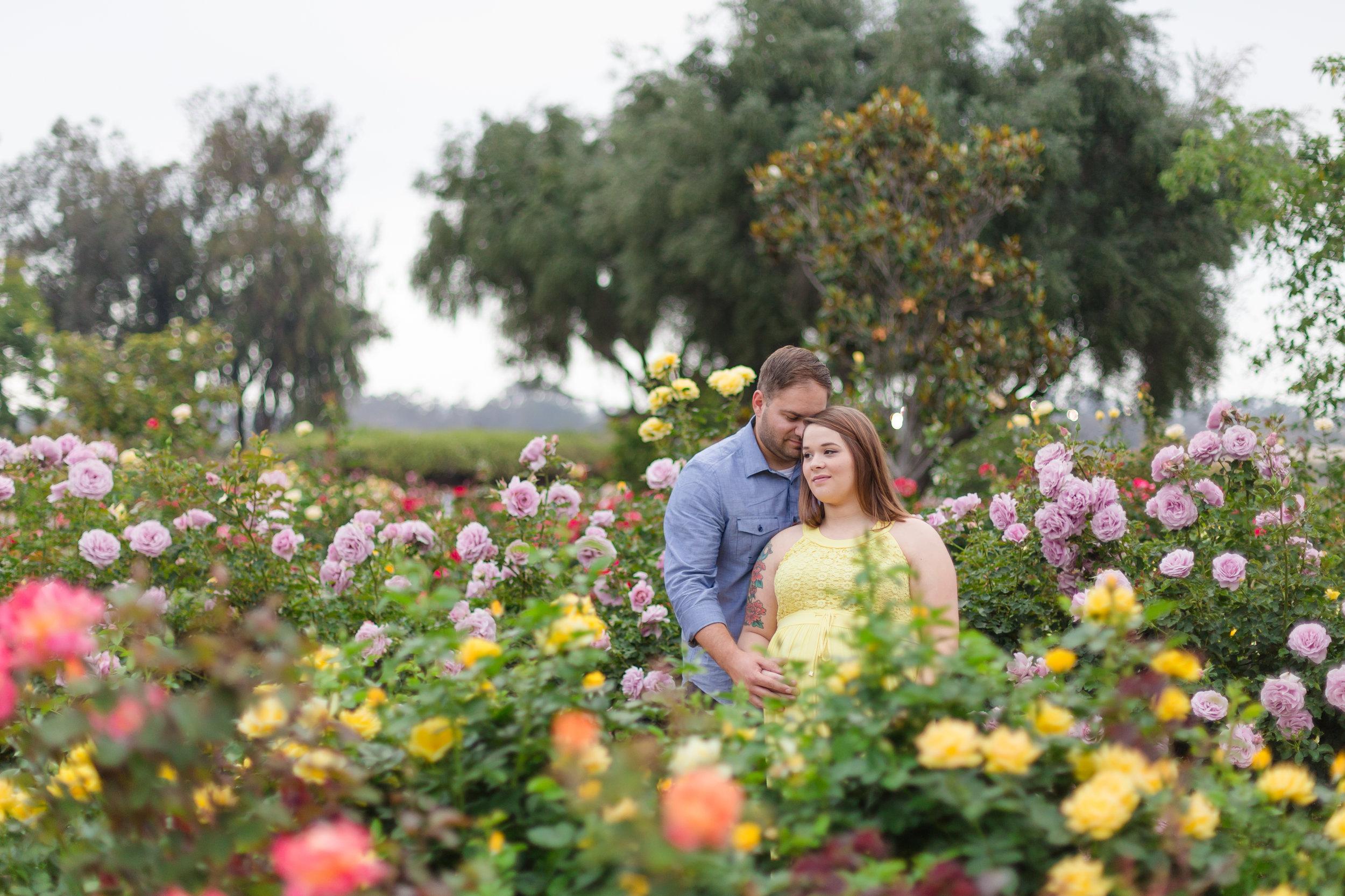 Balboa Park Rose Garden Maternity Session| Summer 2016