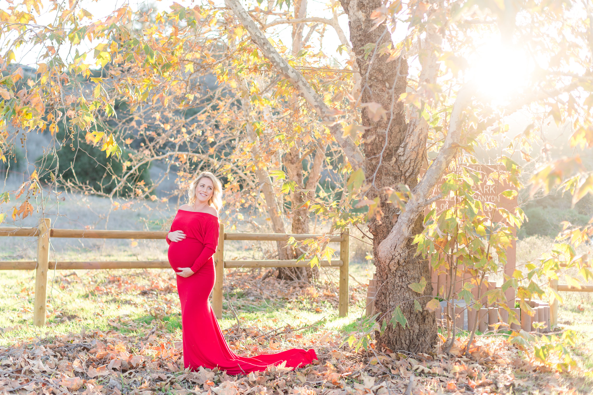 Marian Bear Park Maternity Photoshoot-7917.jpg