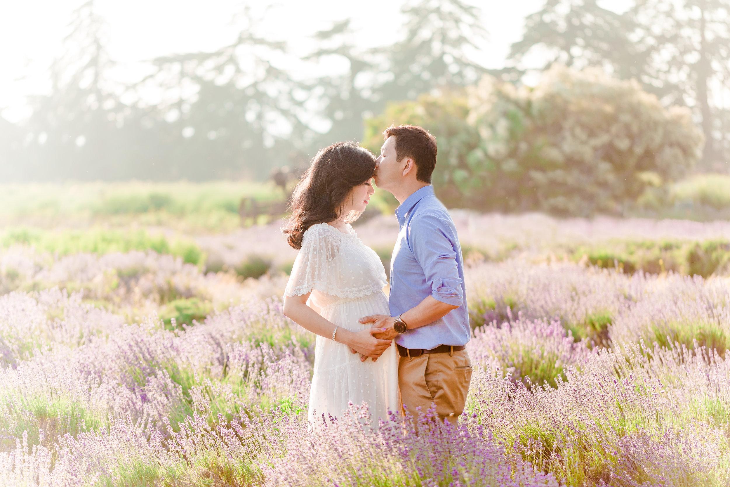 southern california lavender photos