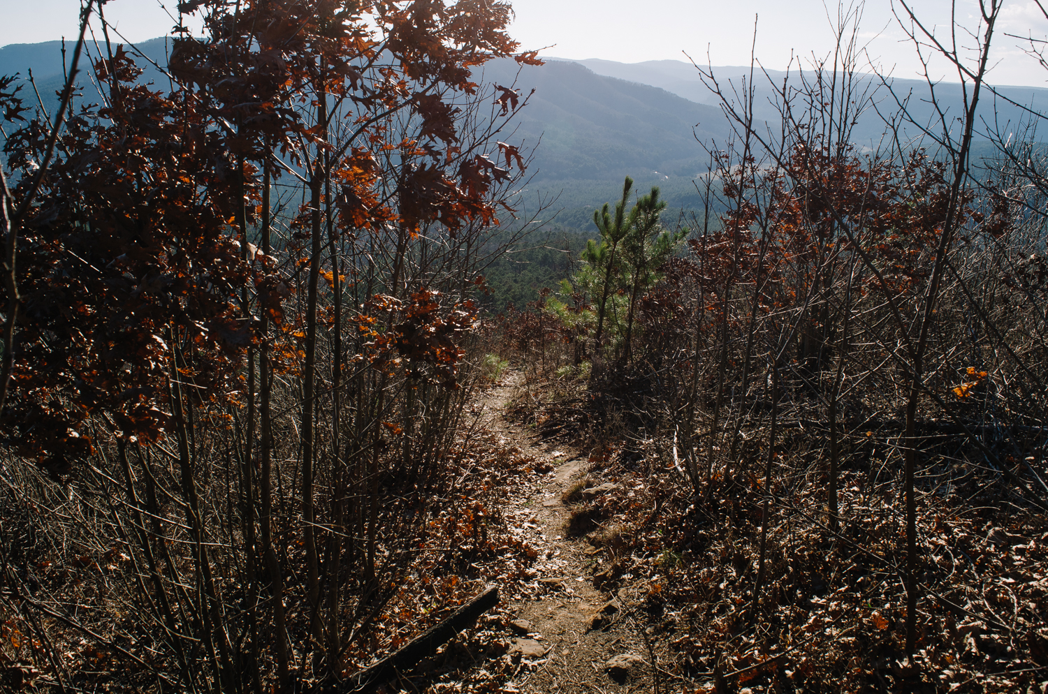 The trail and views up to the Arkansas Sphinx.