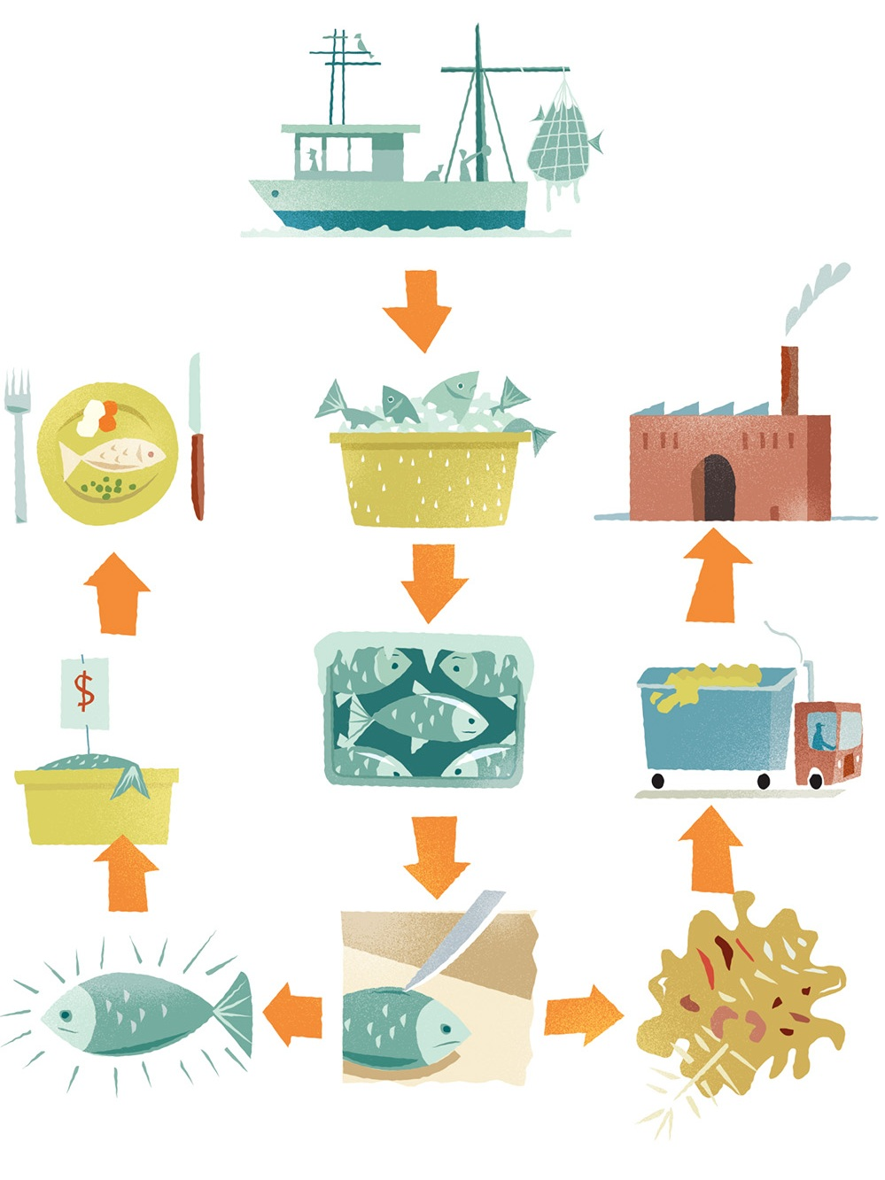 Fishing Industry process chart illustration-Dean Gorissen.jpg