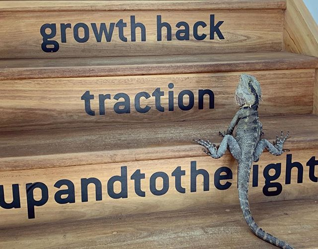 C L I M B  #upandtotheright #traction #growthhack #dragonsden ...