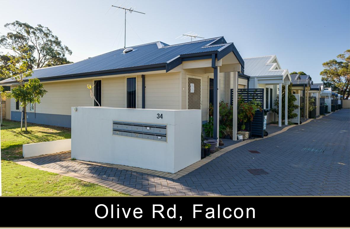 Olive Rd, Falcon.jpg