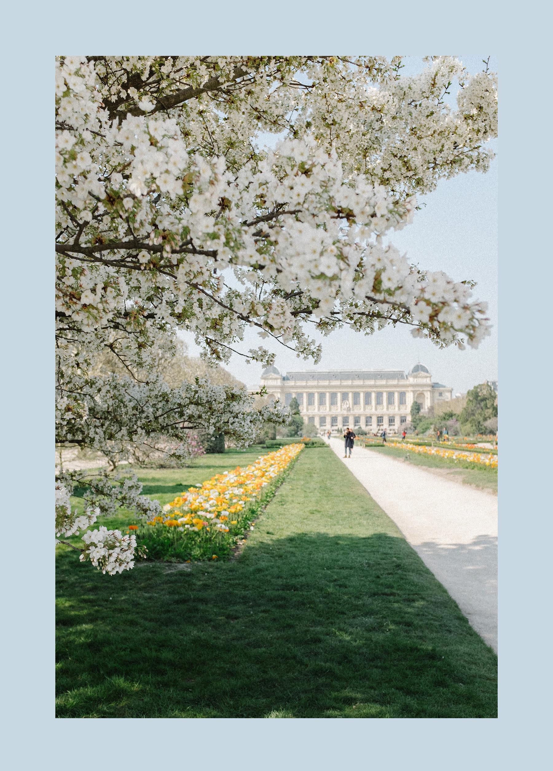 Paris_Spring_CarinOlsson_02.jpg