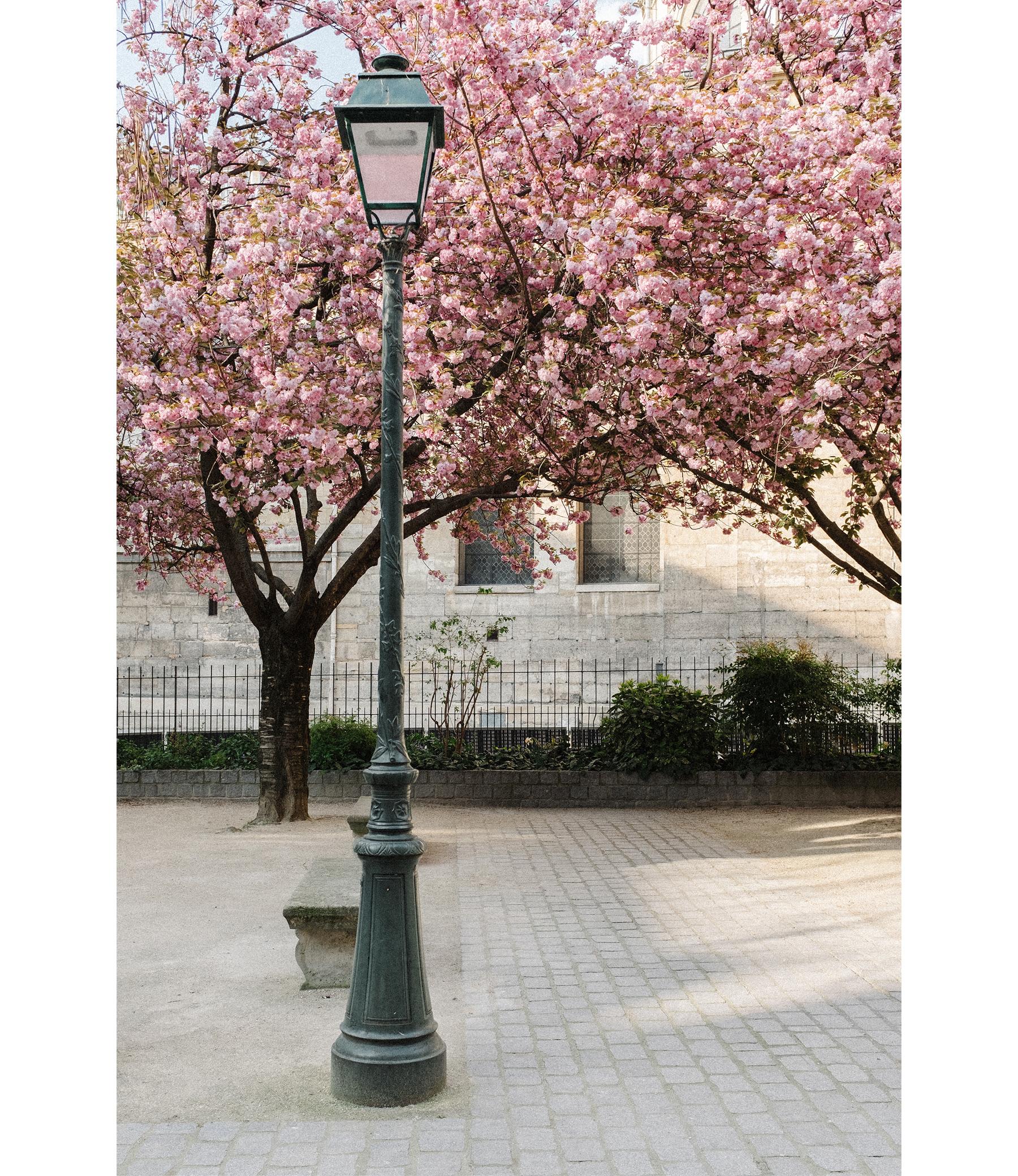 Paris_Spring_CarinOlsson.jpg