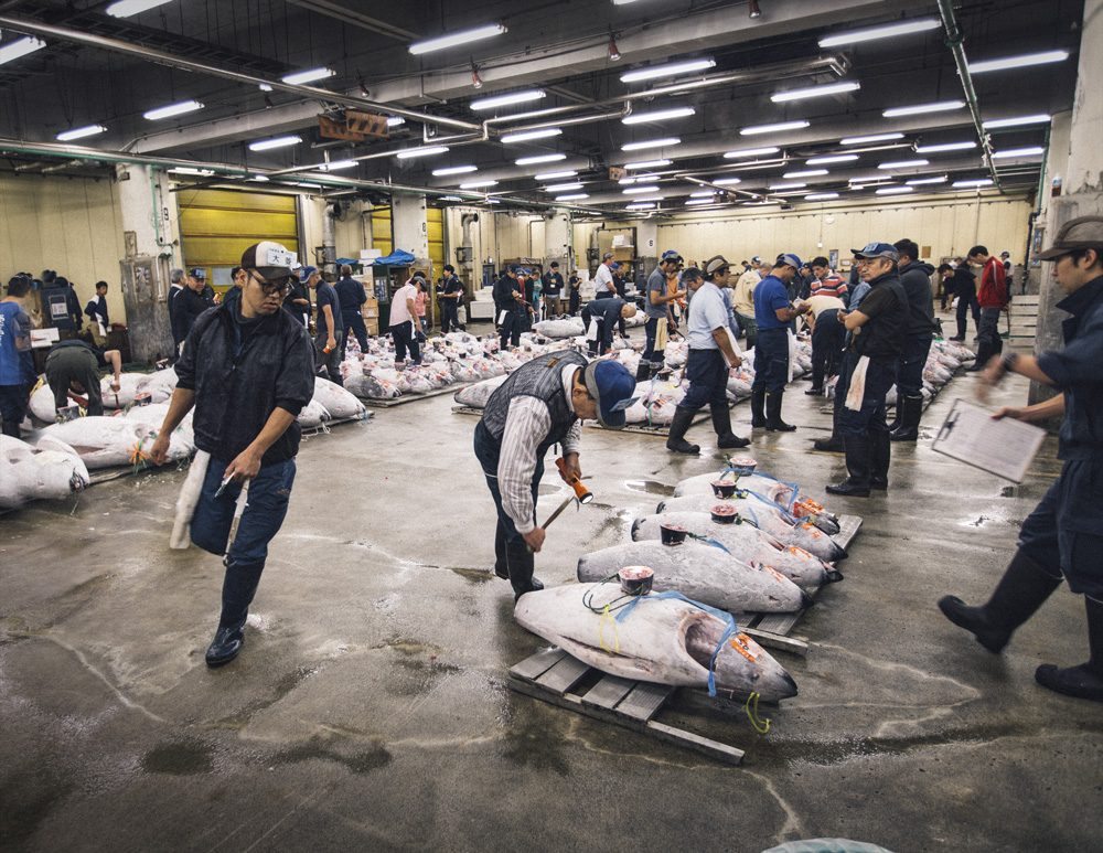 The famous and biggest fish market in the world. This was shot during the tuna auction, where a single fish was sold for 1.7U$ Million in 2013.