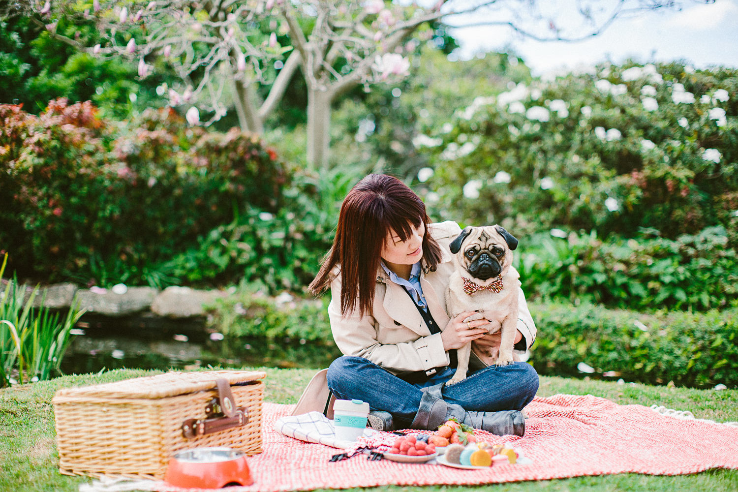 twoguineapigs_pet_photography_oh_jaffa_picnic_pugs_1500-8.jpg