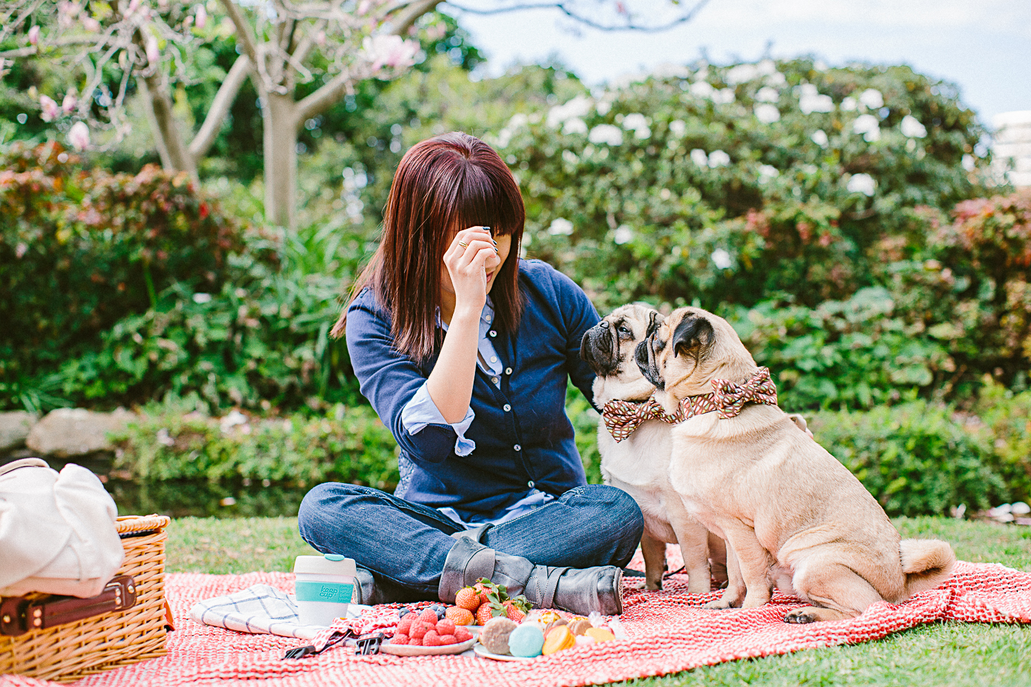 twoguineapigs_pet_photography_oh_jaffa_picnic_pugs_1500-15.jpg