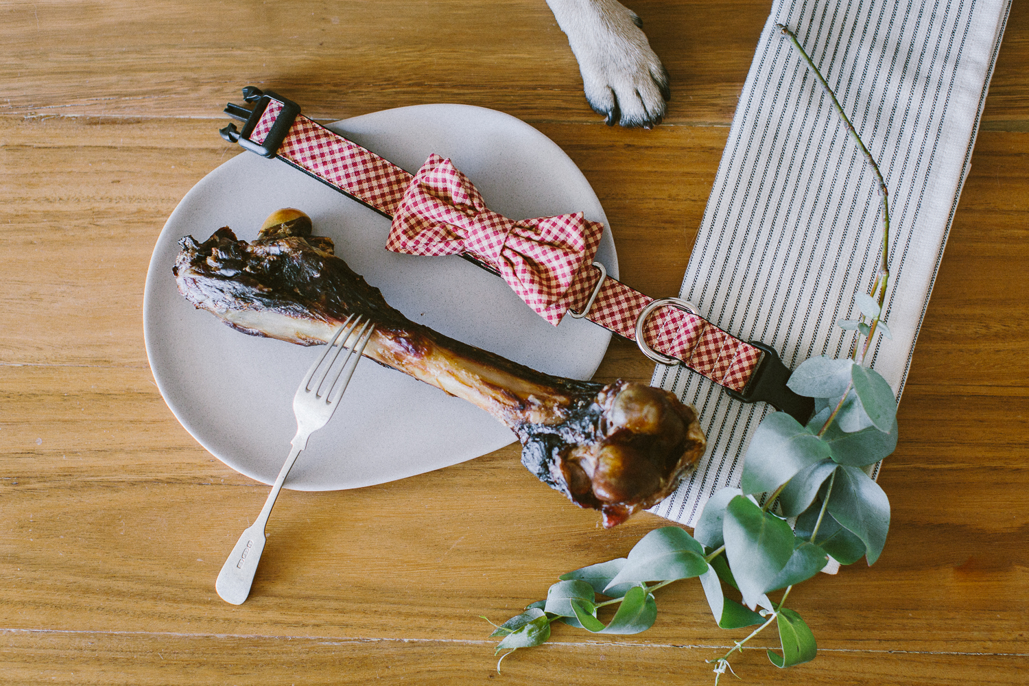 © twoguineapigs_jkblackwell_ohjaffa_christmas_bowtie_collection_WEBSITE-24.jpg