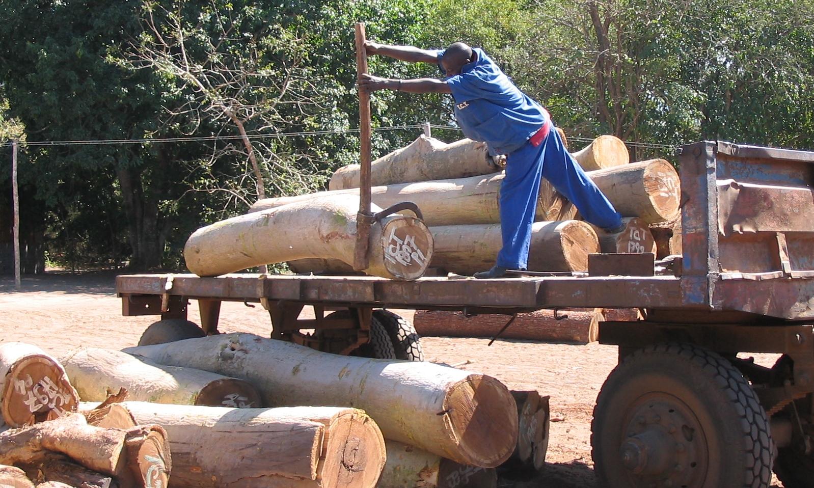 Offloading harvested timber