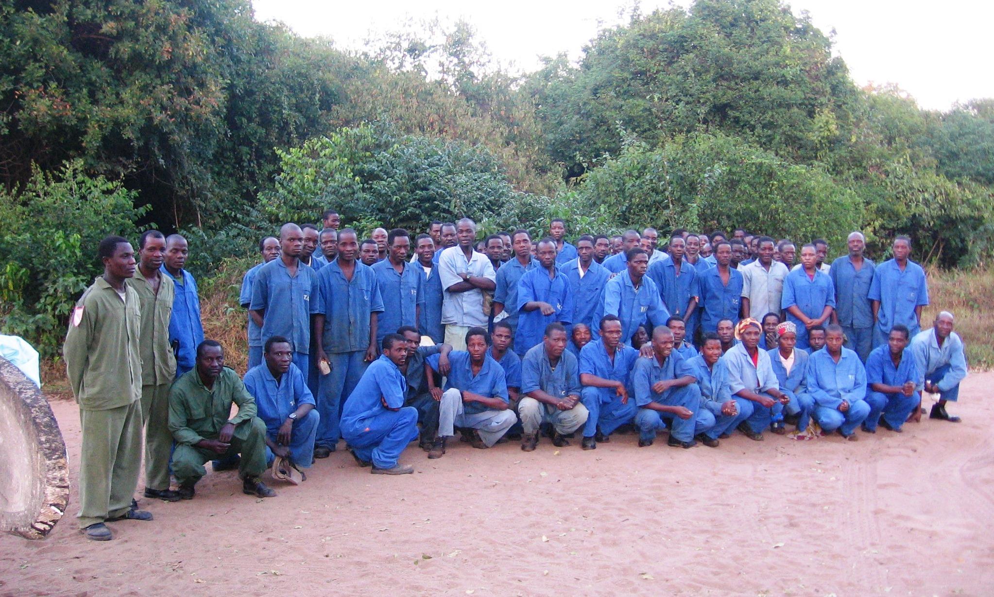 The Catapu team