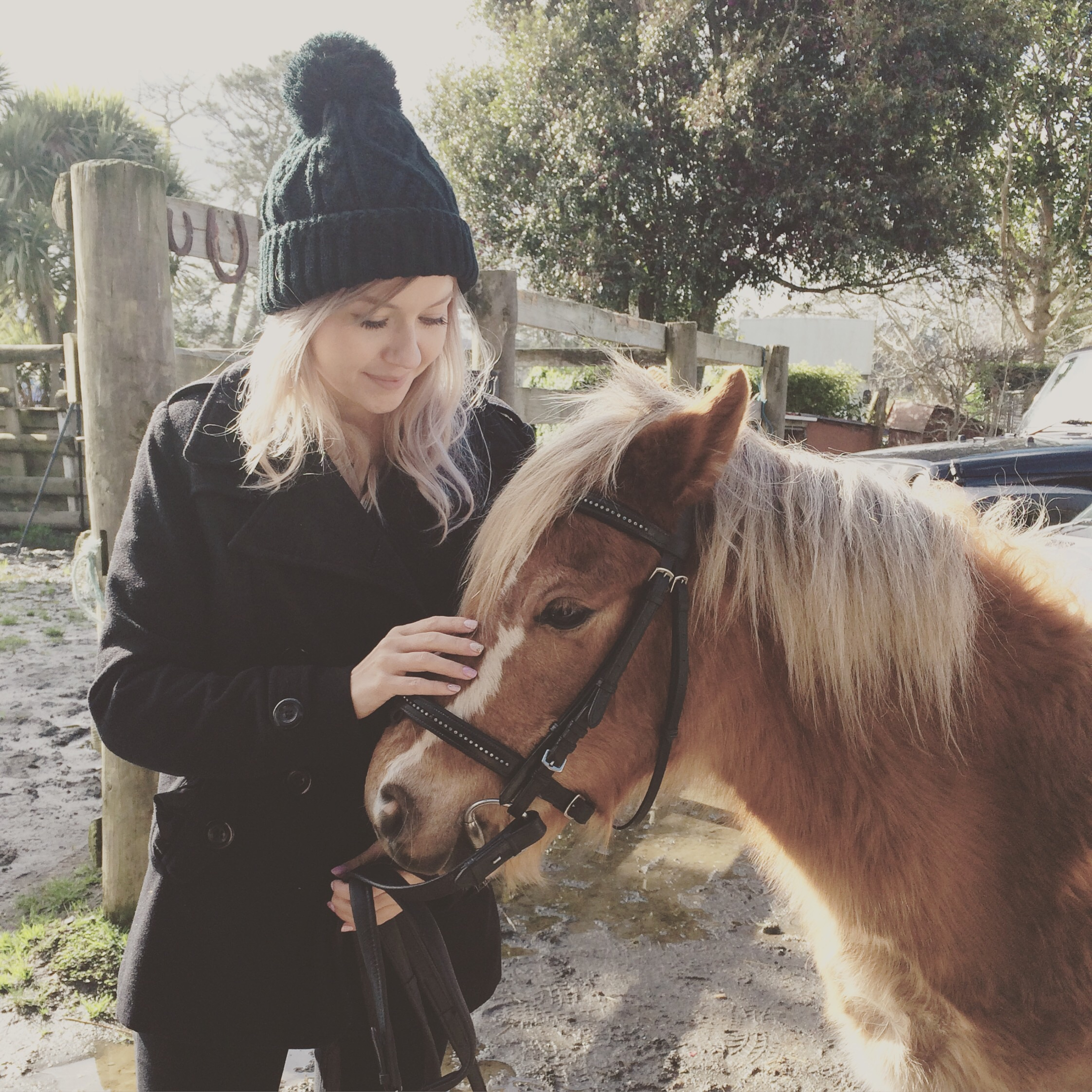 Pony cuddles