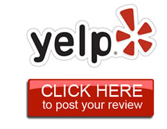 ylp_review