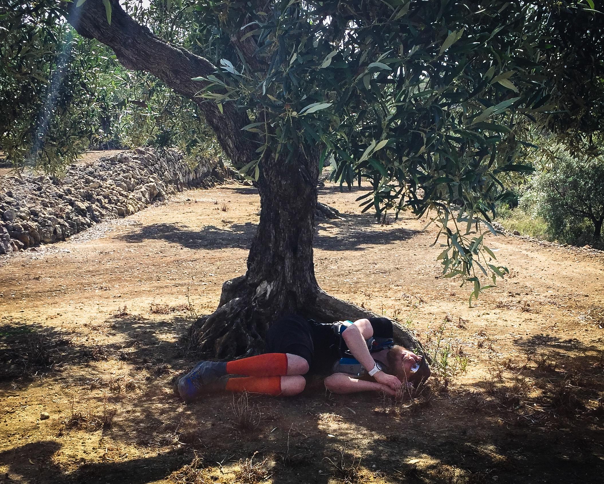 Vissa drömde om att få lägga sig i fosterställning under ett träd och bara vila...