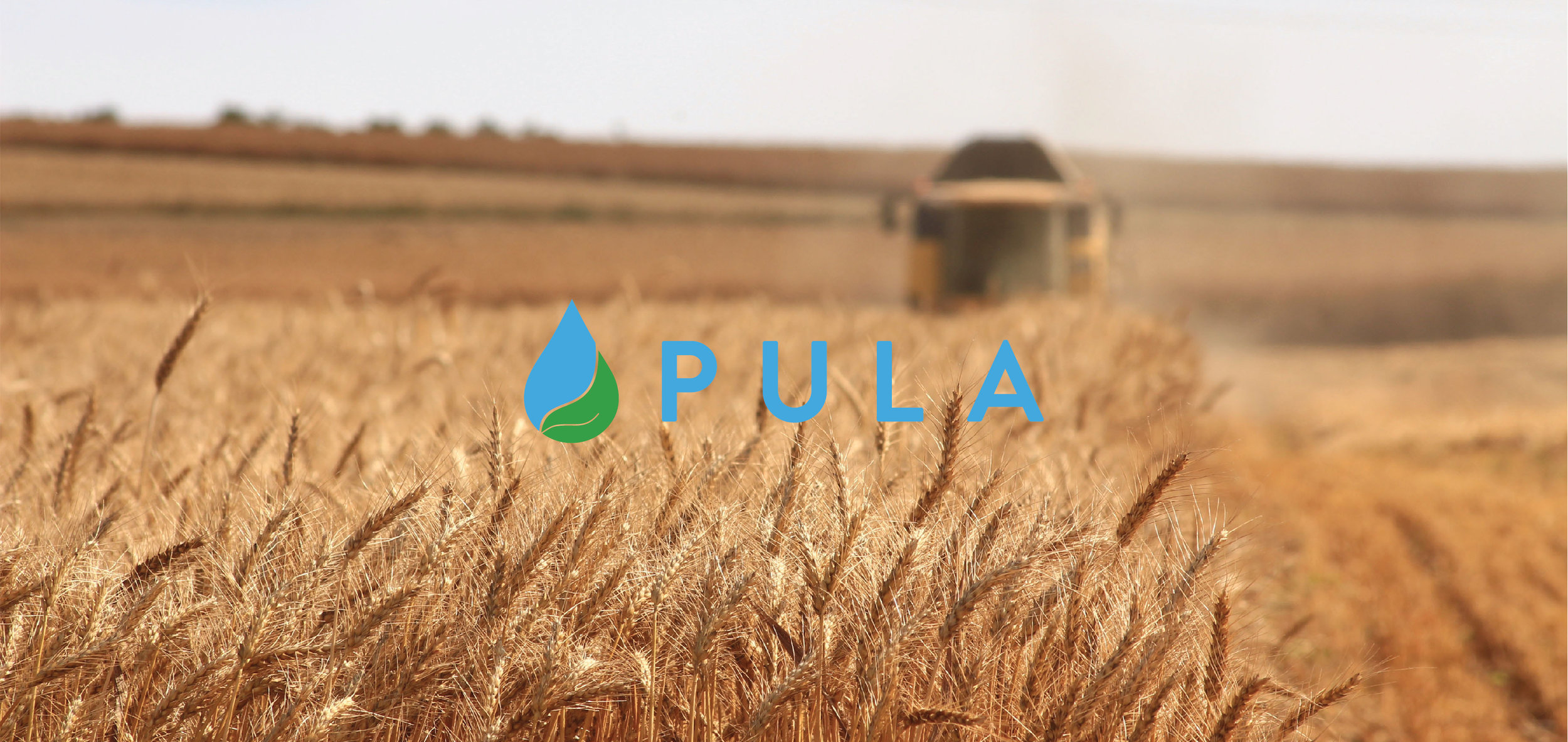 PULA-01.jpg