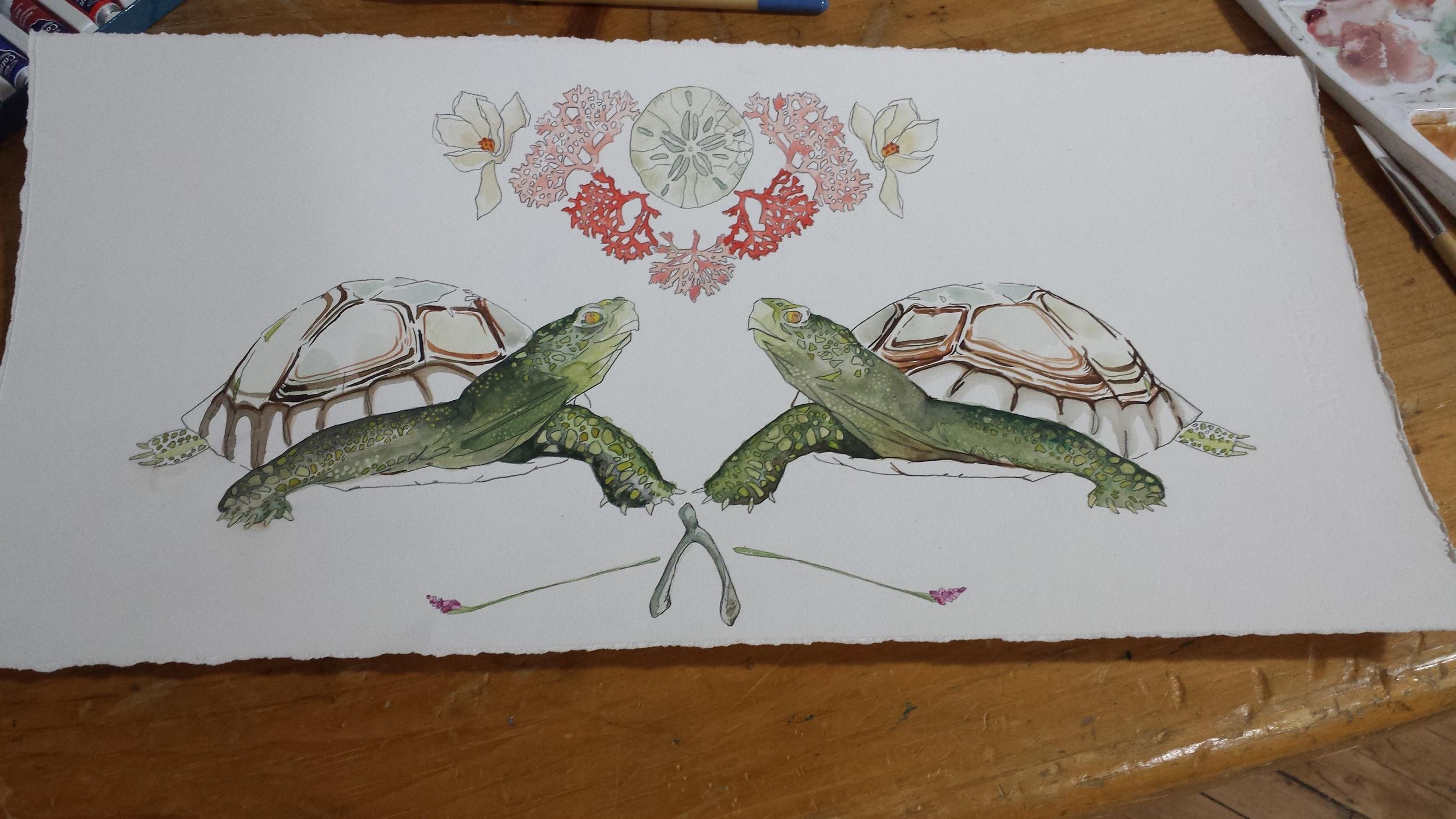Commission-Turtles-2.jpg