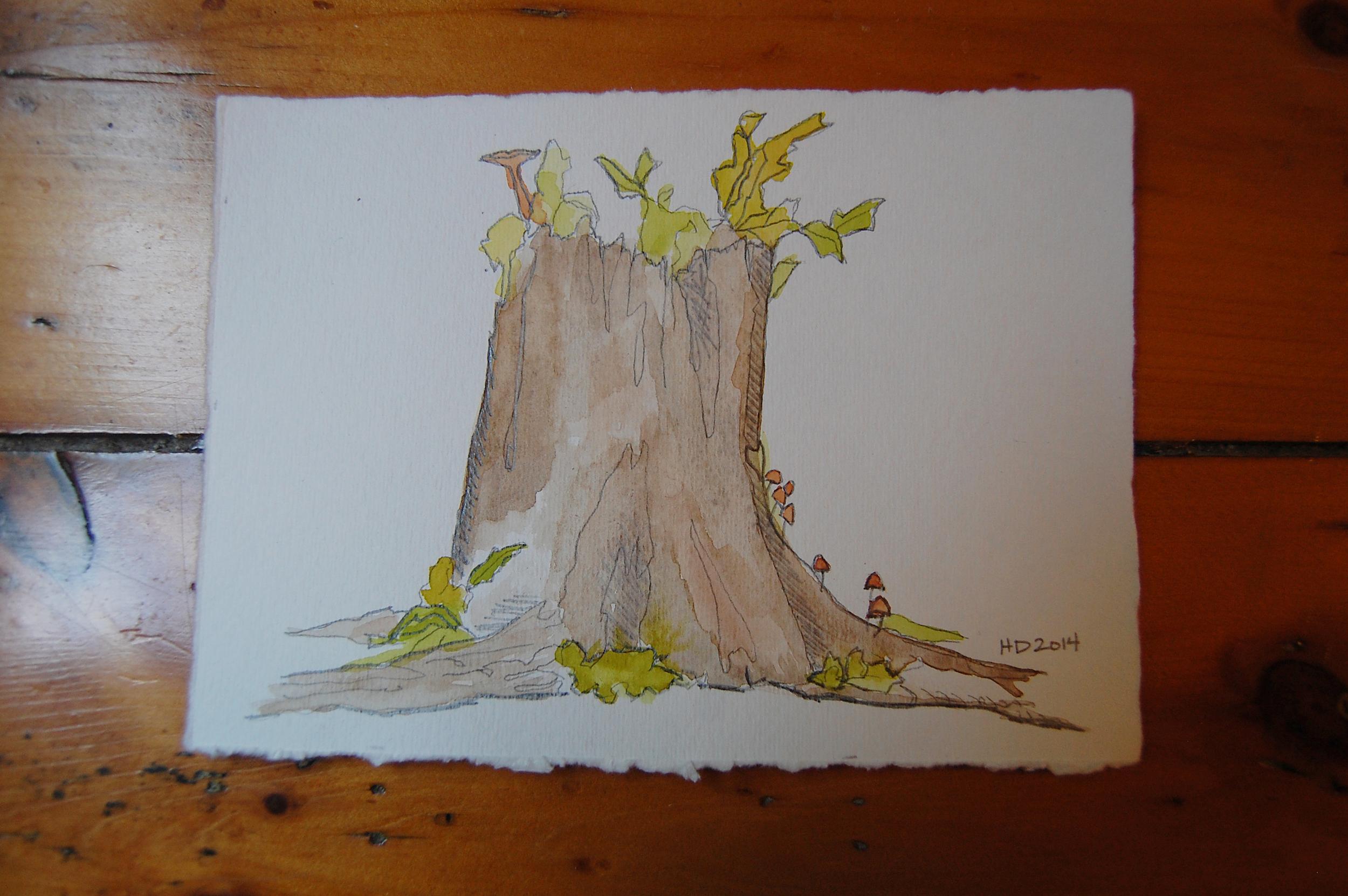illustration-tree2.JPG