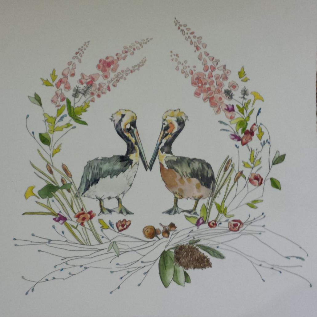 Pelicans-2013.png