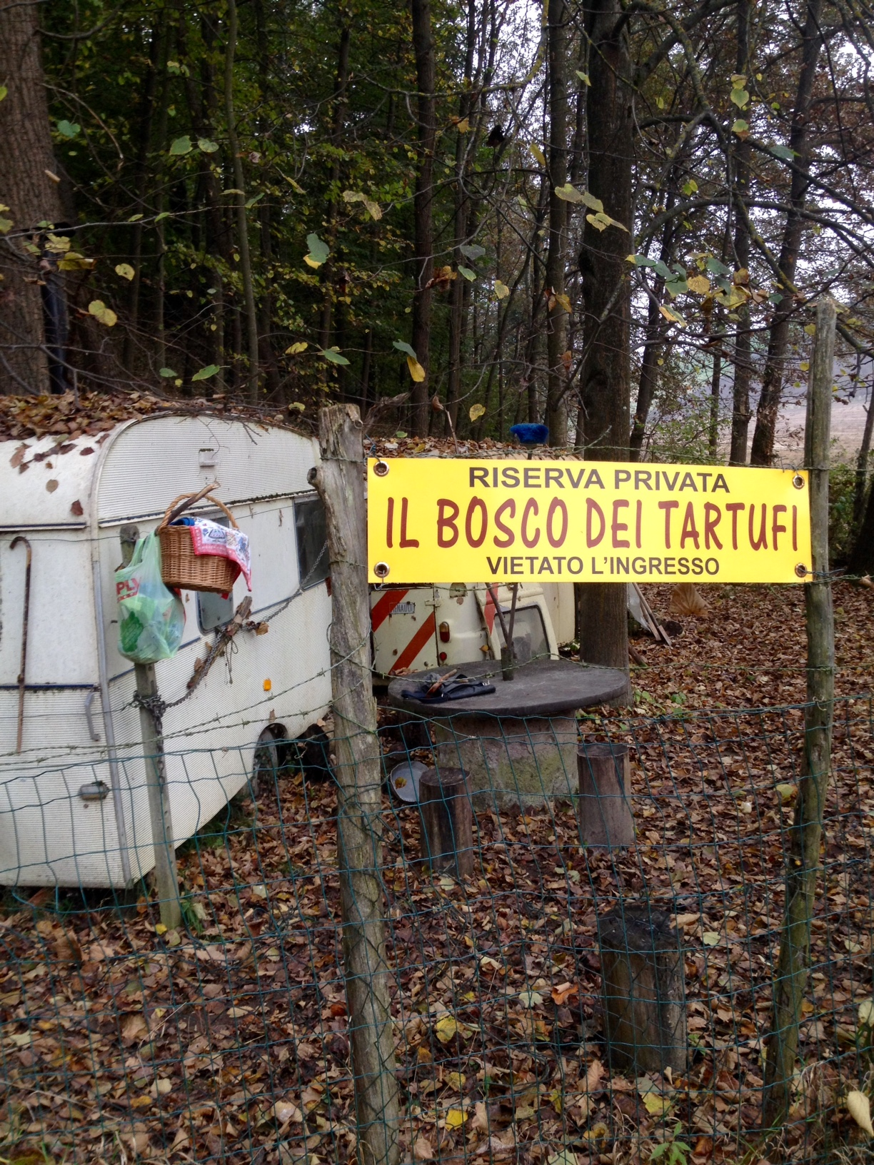 The entrance into Beppe's woods and a little camp area.