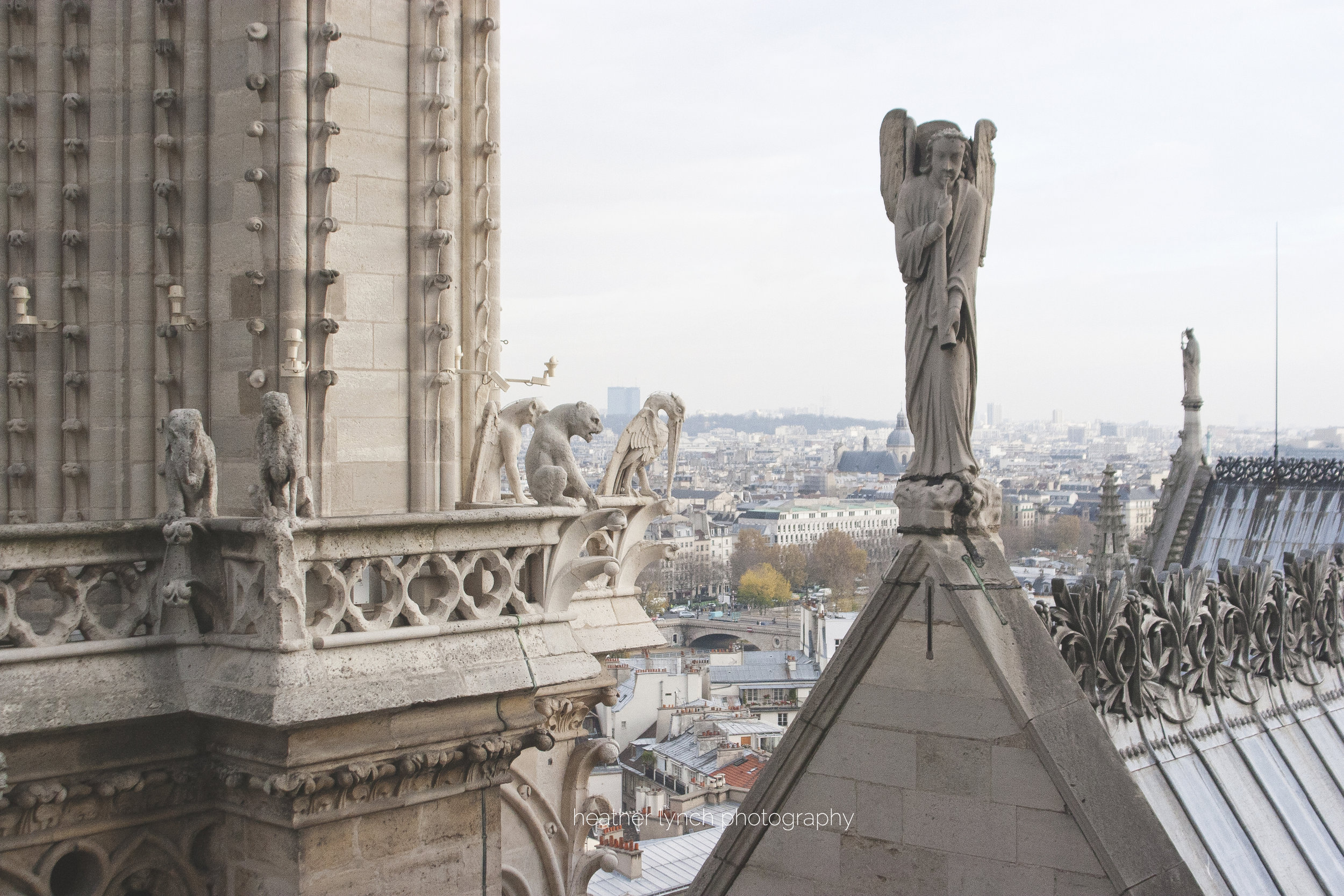 An elephant and a heron are included in Notre-Dame's protective cast of of characters.