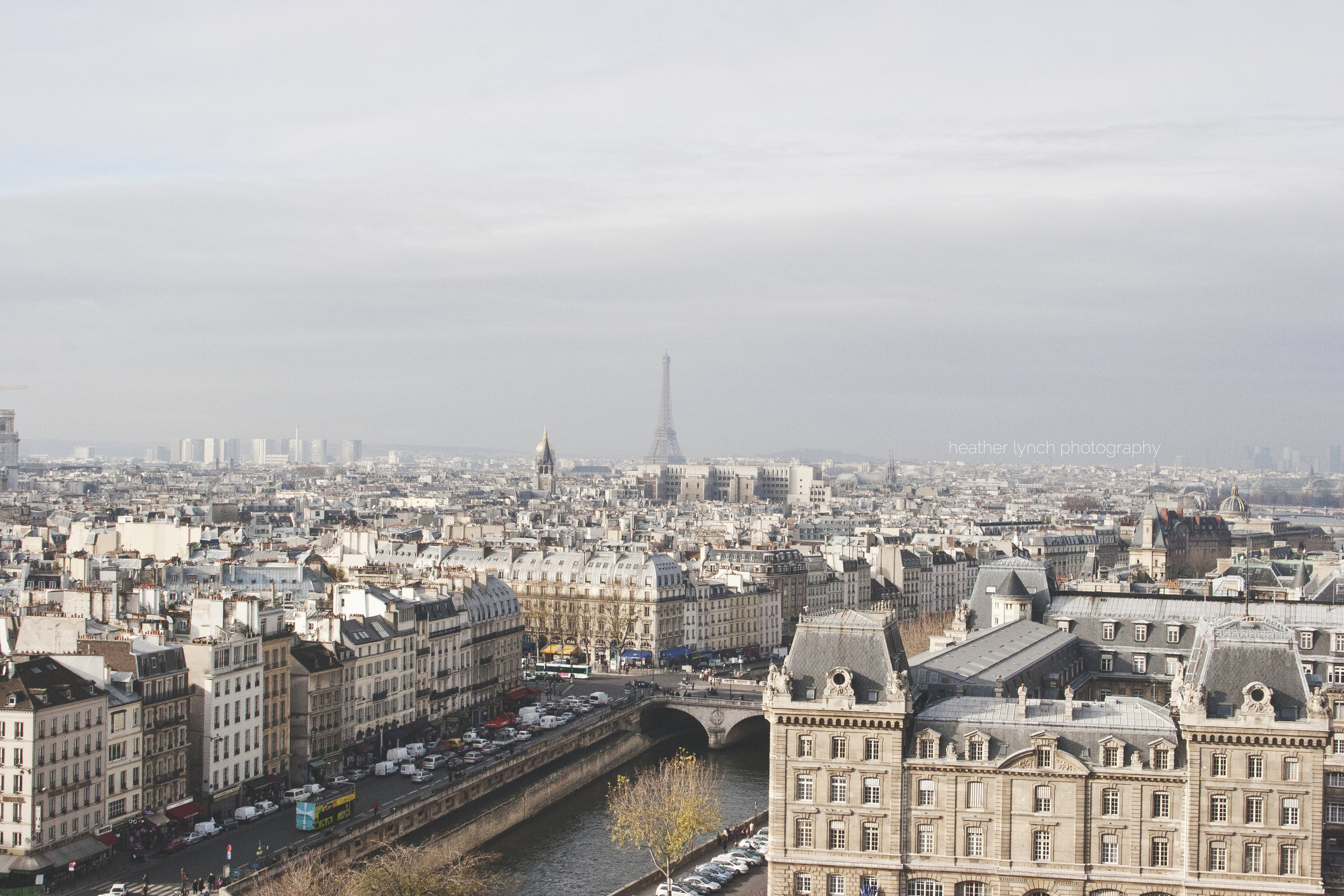 The view from the top of Notre Dame, toward the Eiffel Tower.