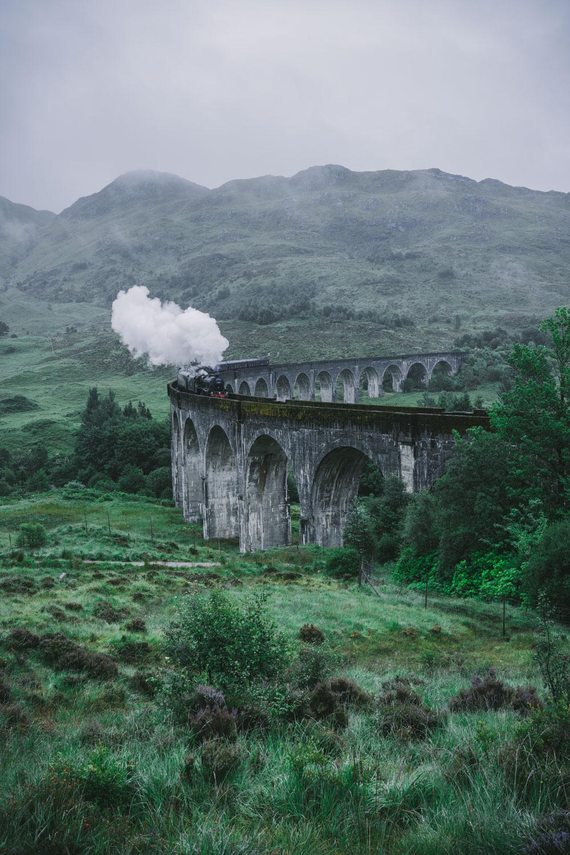 Jacobite Harry Potter