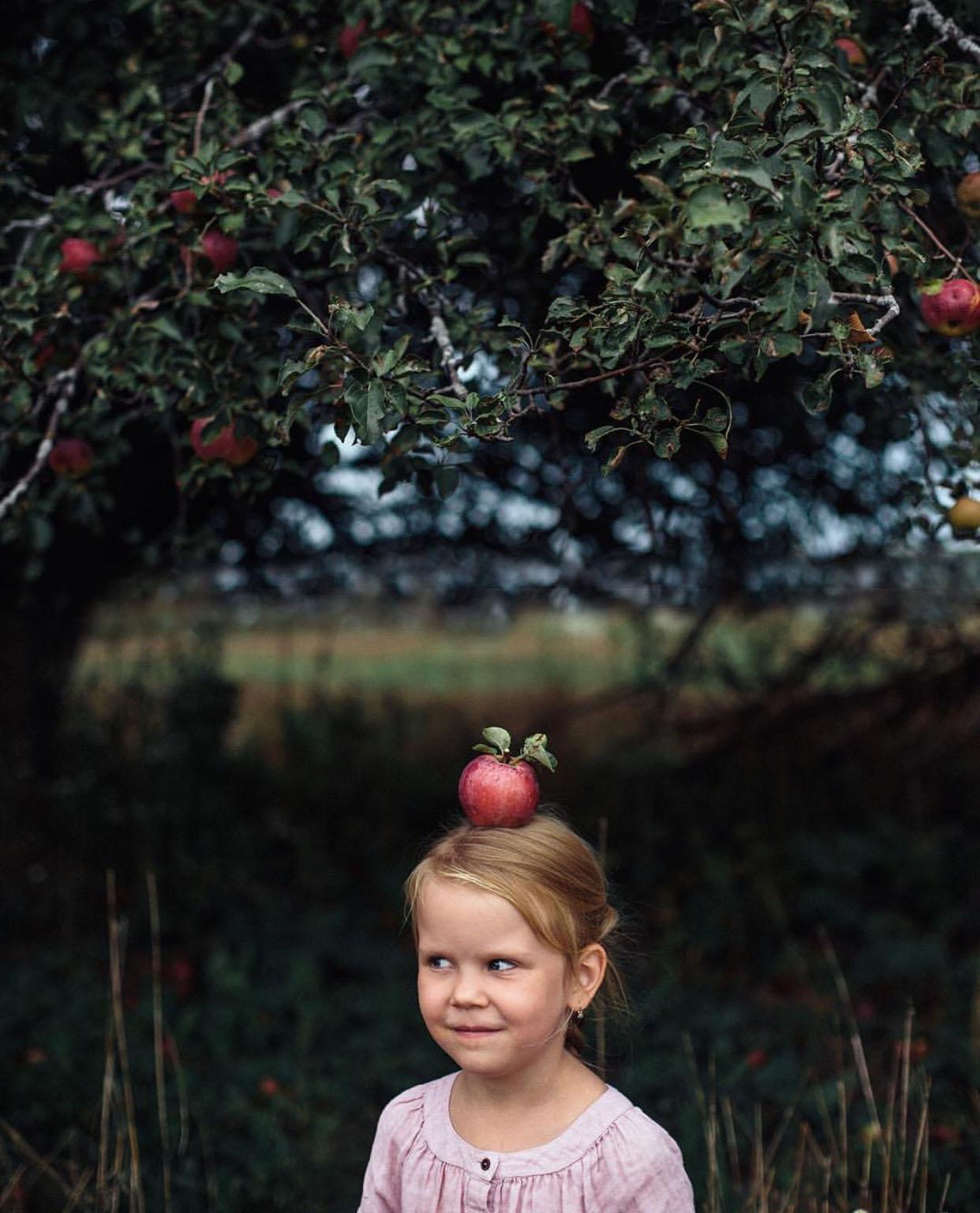 applewinner6.jpg
