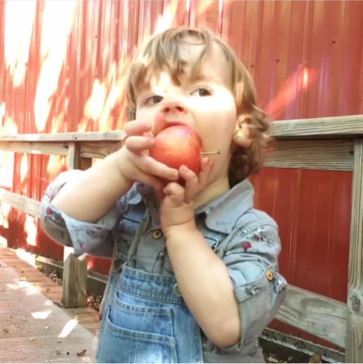 applewinner31.jpg