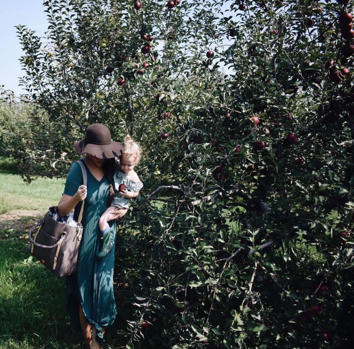 applewinner4.jpg