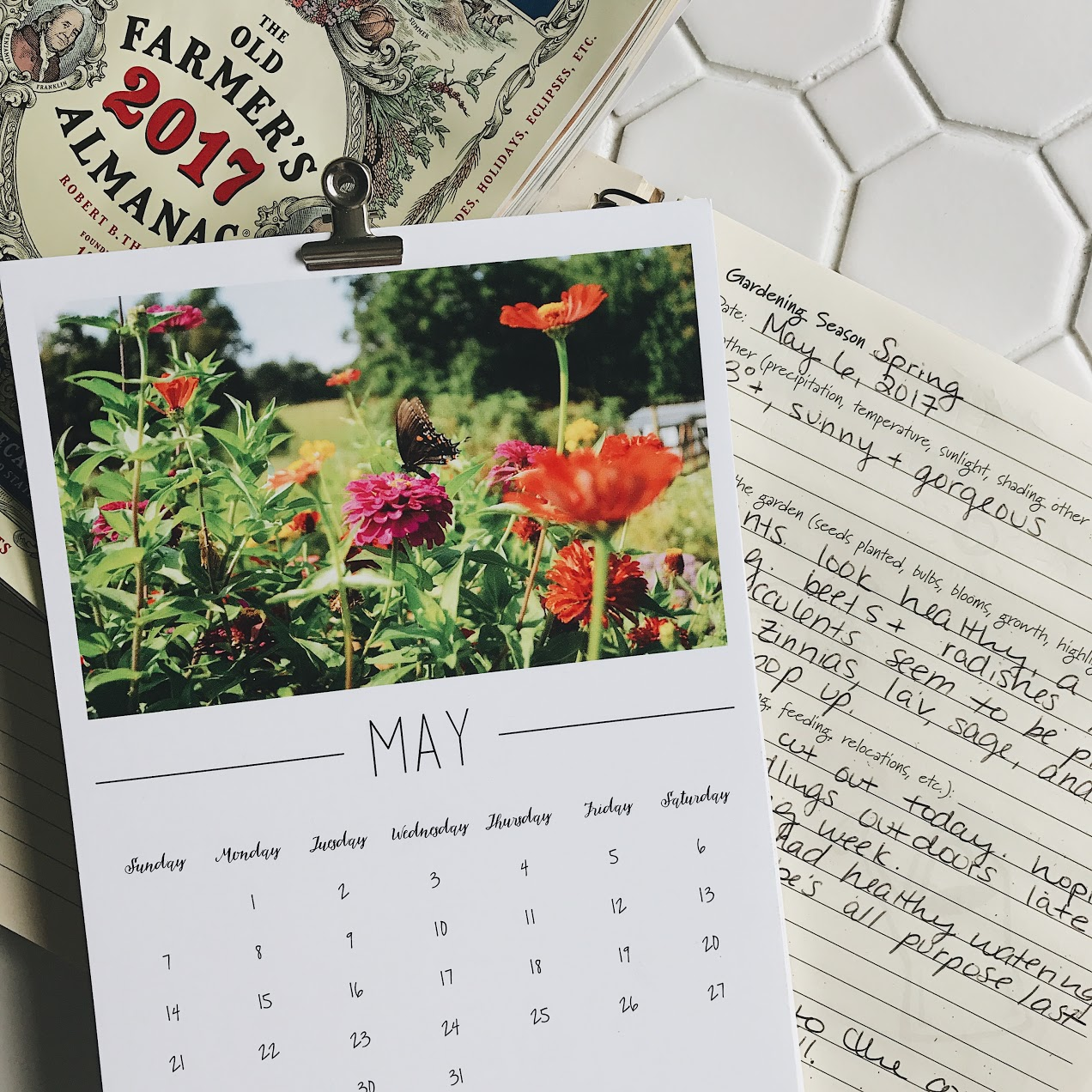 How to Keep a Gardening Journal