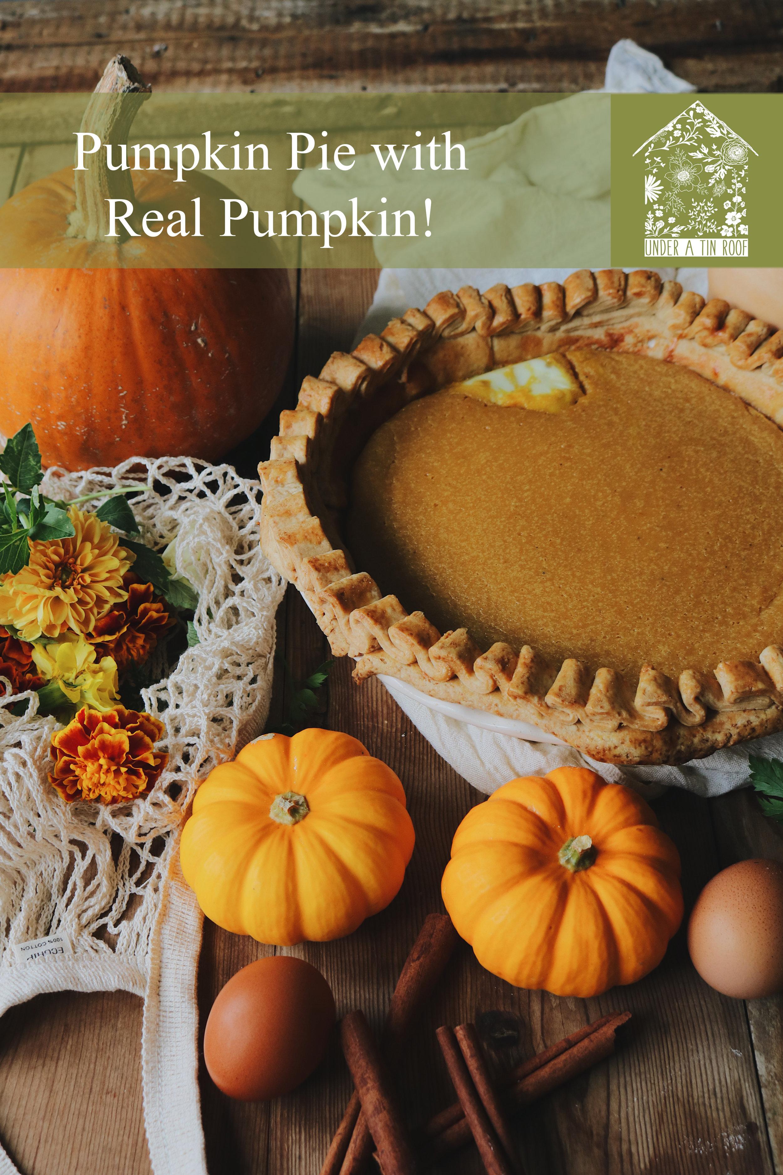 pumpkinpiepin.jpg