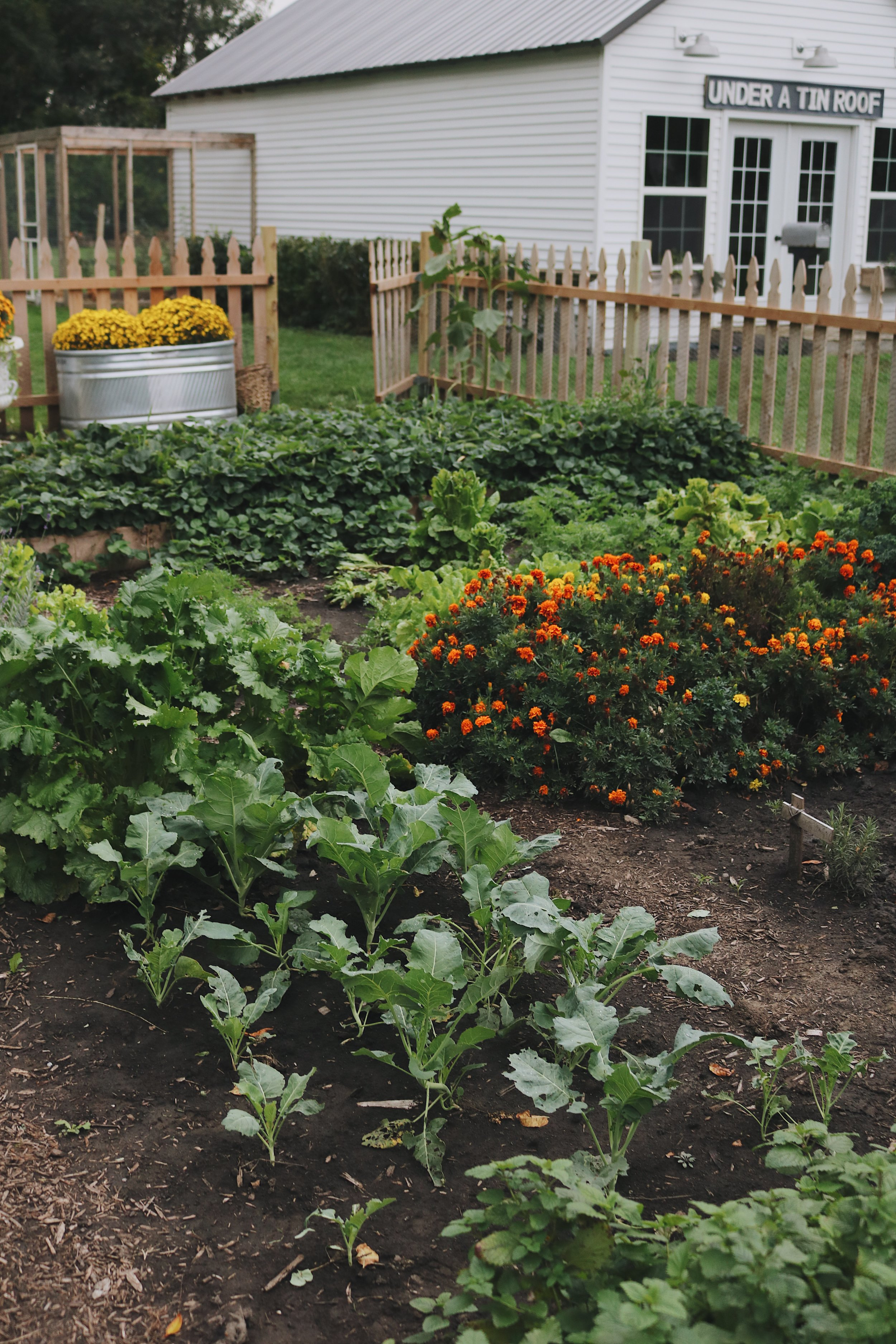 Homestead Update: Expanding the Garden, Darker Days, and Slowing Down - Under A Tin Roof Blog