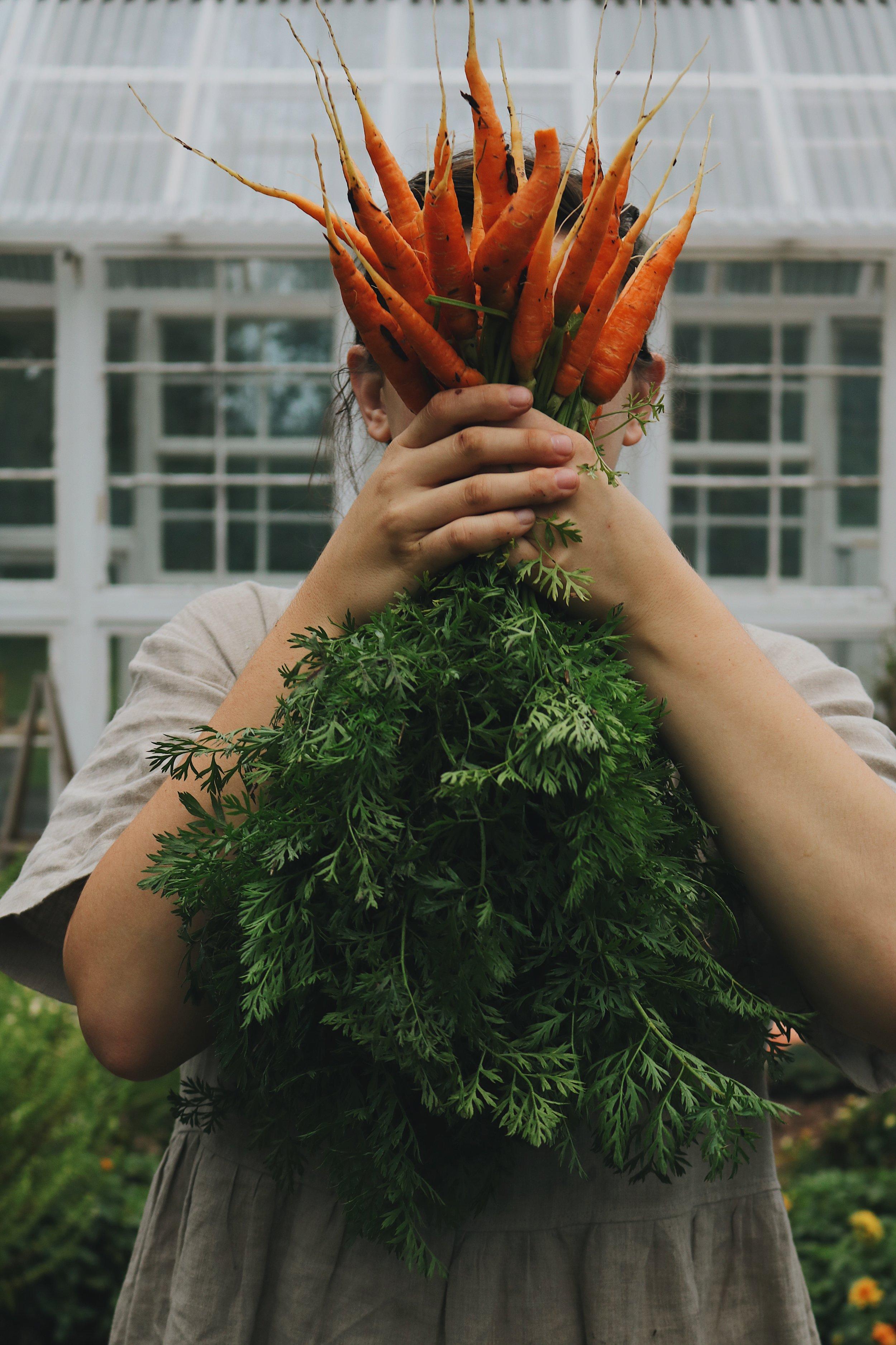 Autumn in the Garden   Recap 2017 - Under A Tin Roof Blog
