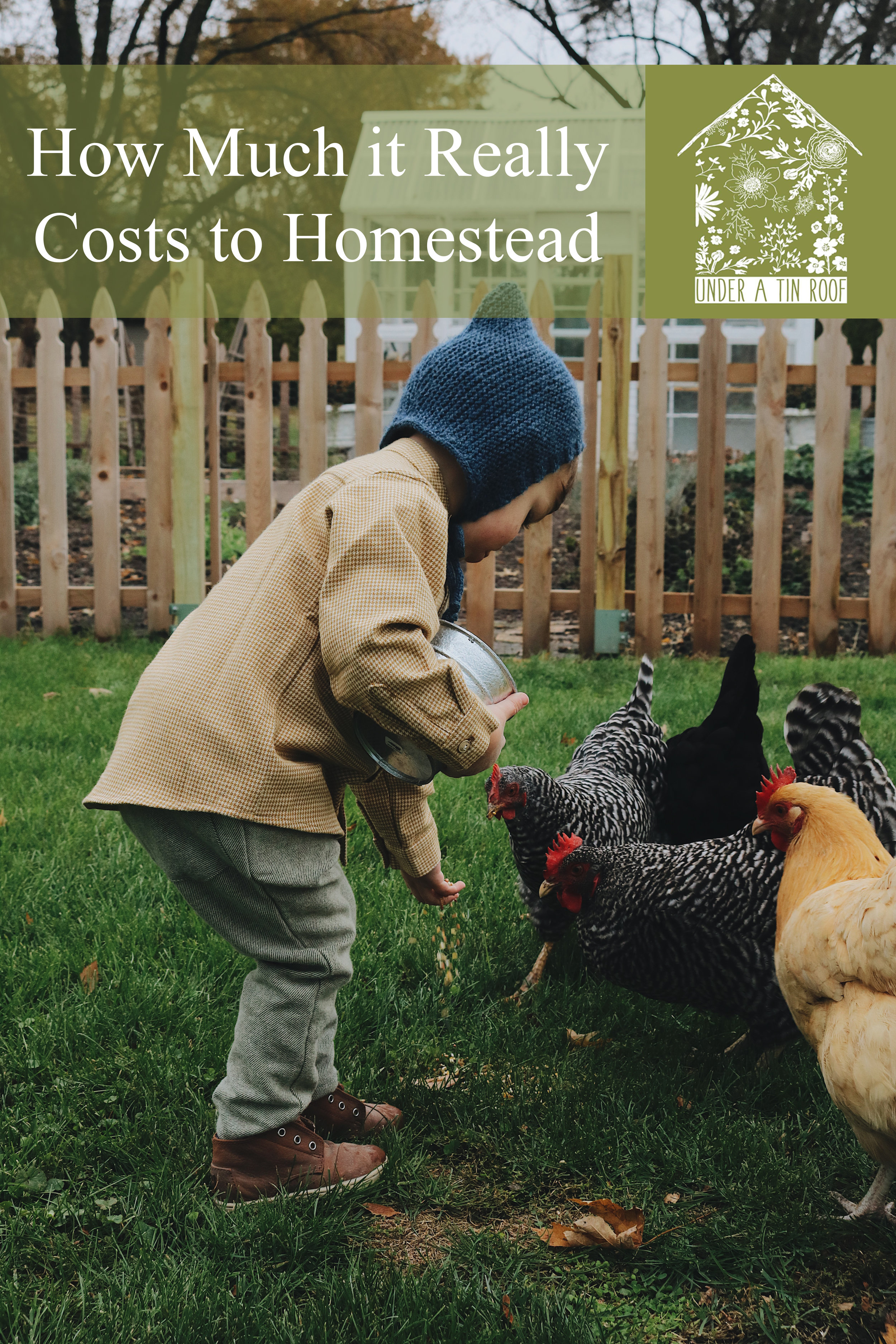 How Much It Really Costs to Homestead on Less Than an Acre - Under A Tin Roof Blog